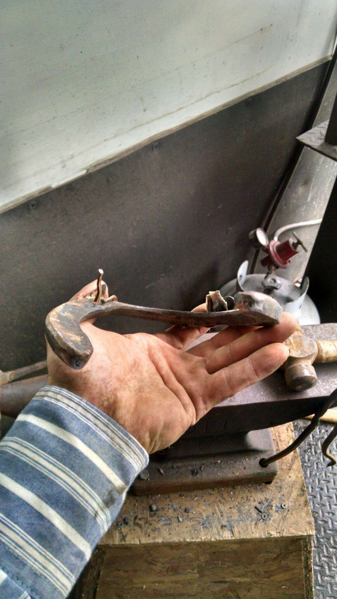 Lost Shoes – Dixie's Farrier Service
