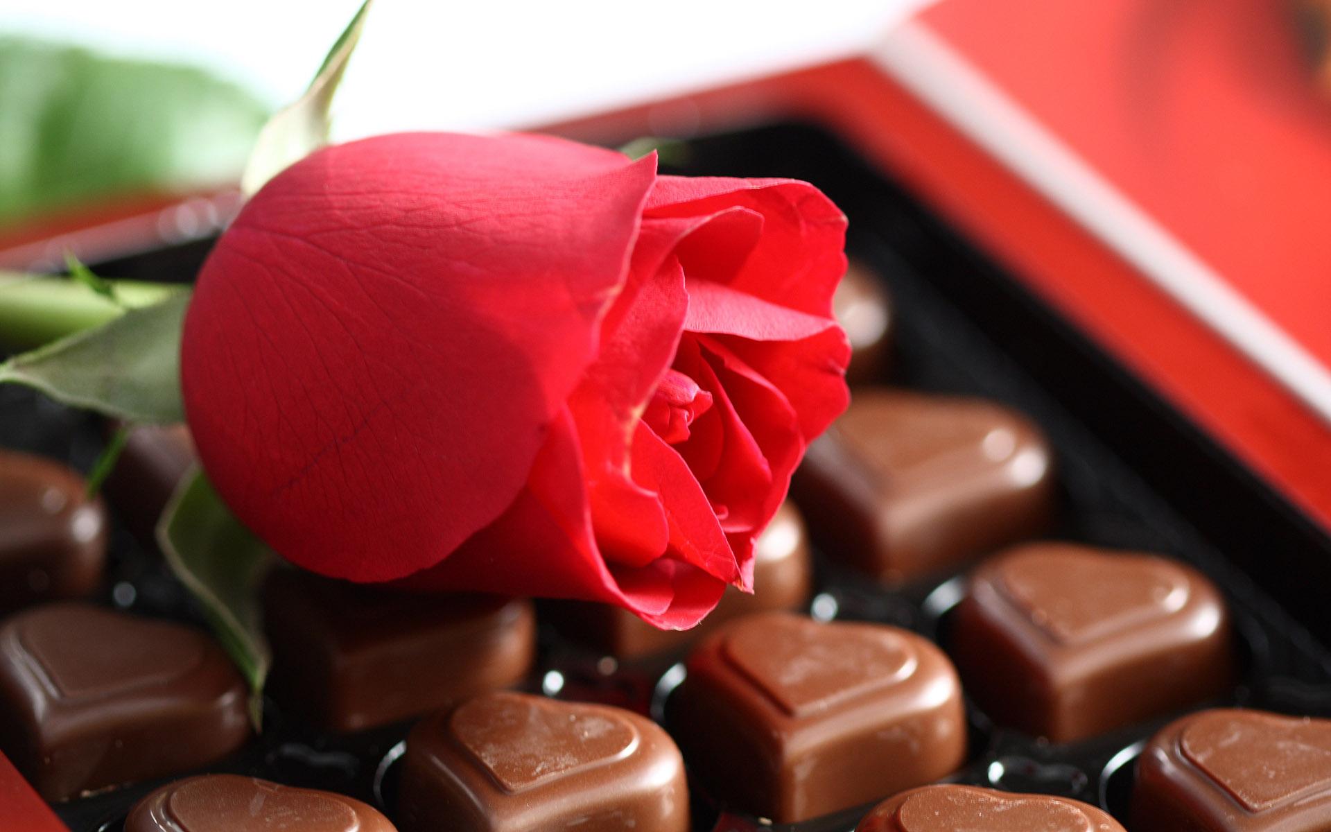 Mixed Chocolate Box – Namesta Nepal