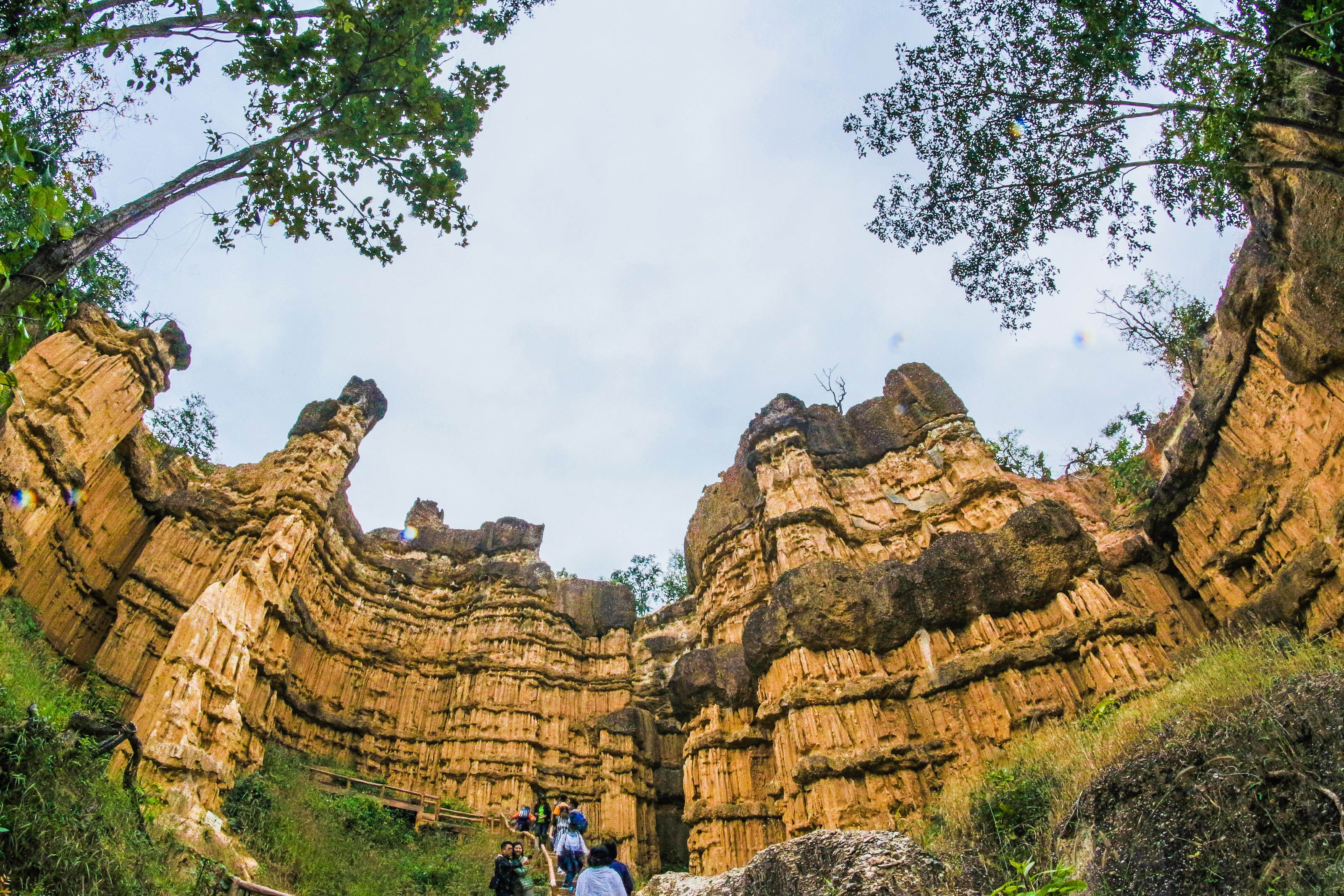 Low Angle View of Brown Ruins Near Green Leaf Trees, Adventure, Scenic, Outdoors, Park, HQ Photo