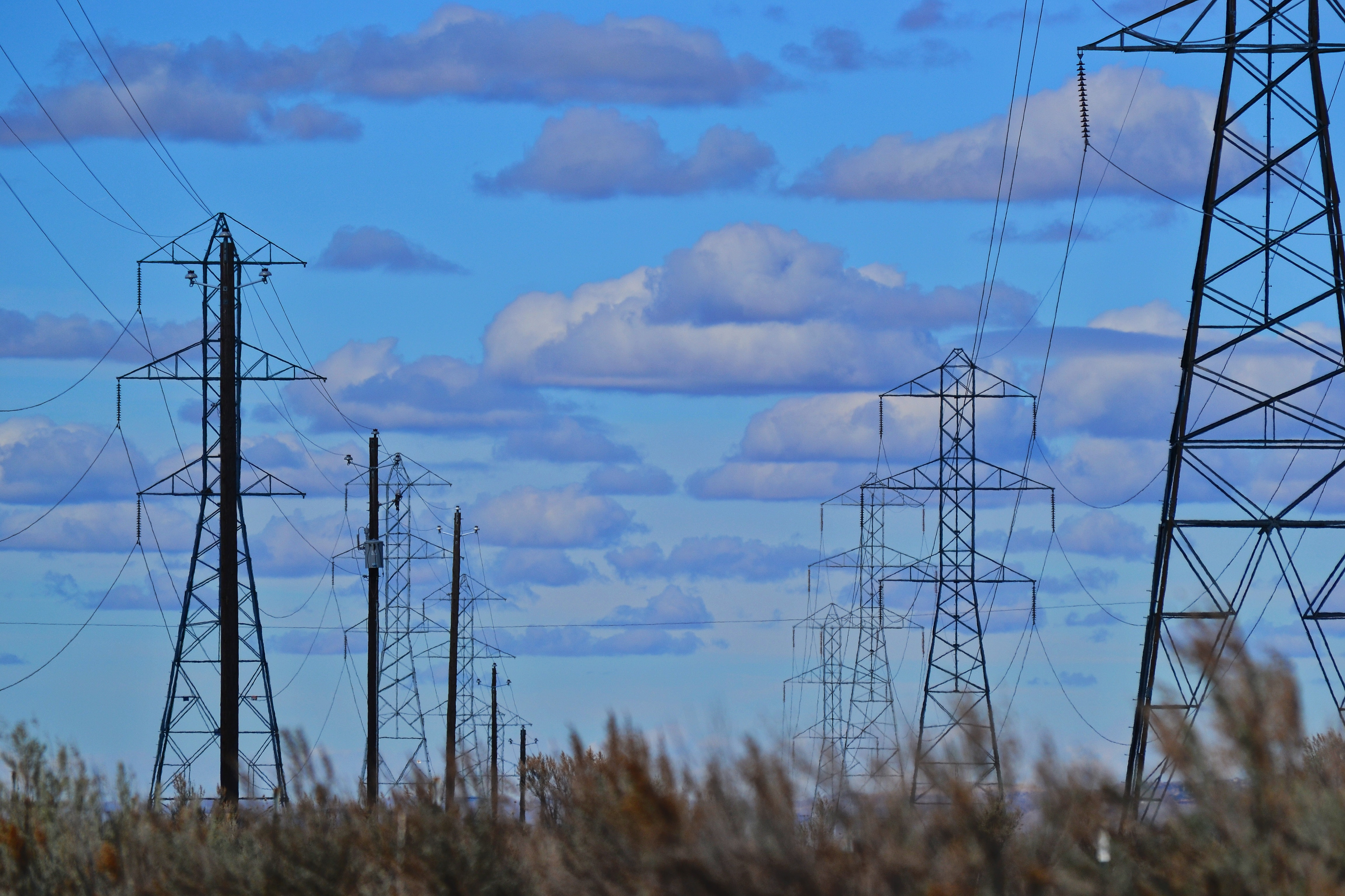 Electrical towers in the field against the blue sky photo