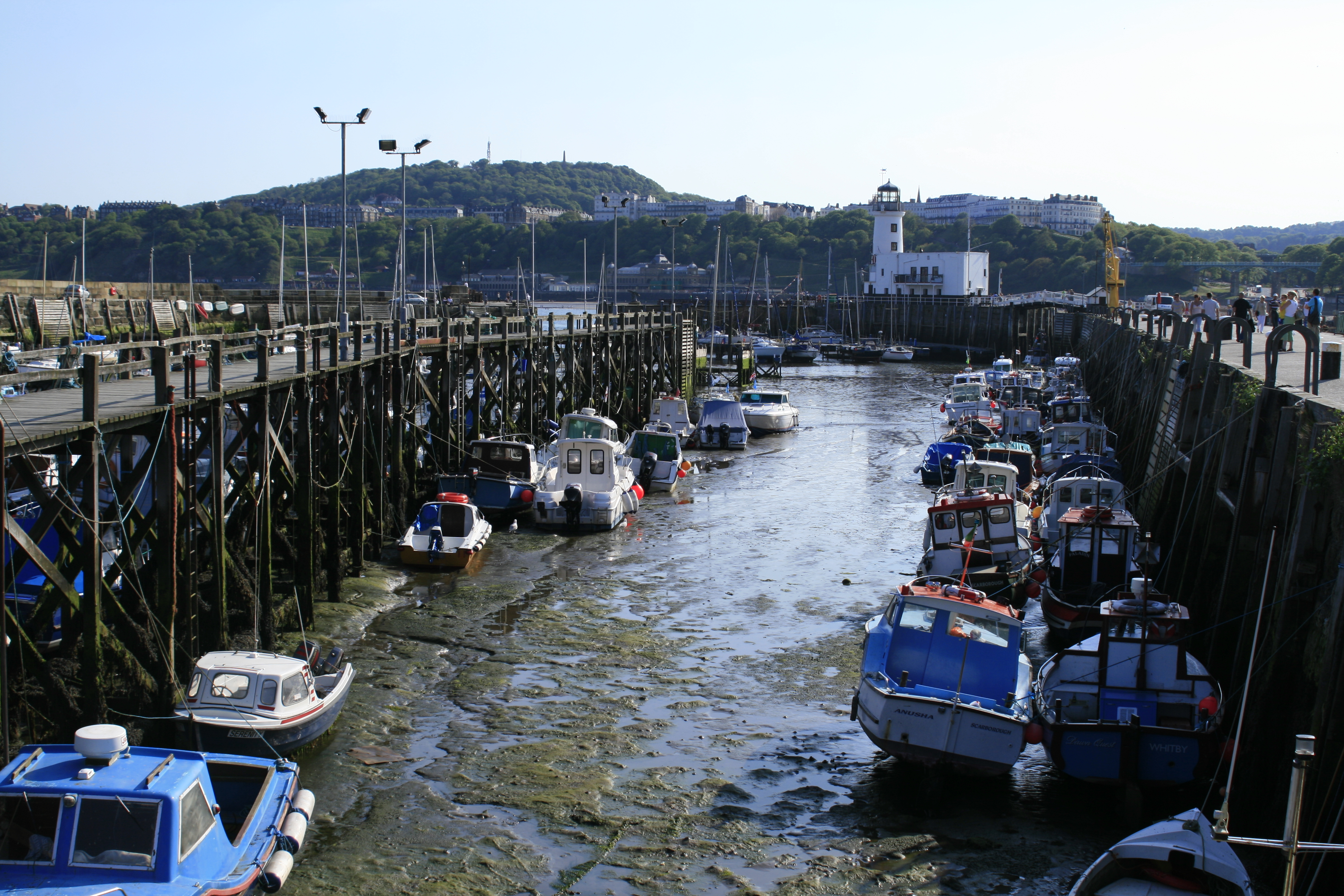 Low Tide in Scarborough, Boats, Harbour, Low, Tide, HQ Photo
