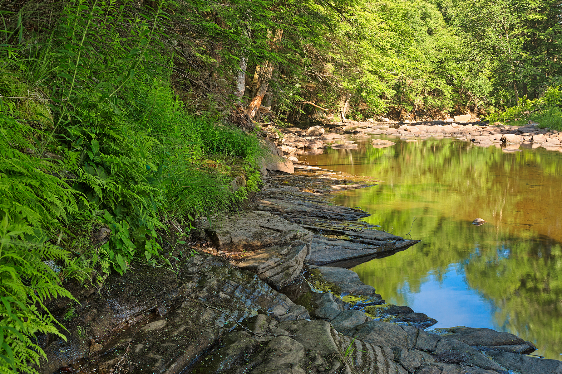 Loyalsock Creek - HDR, America, River, Shadow, Shades, HQ Photo