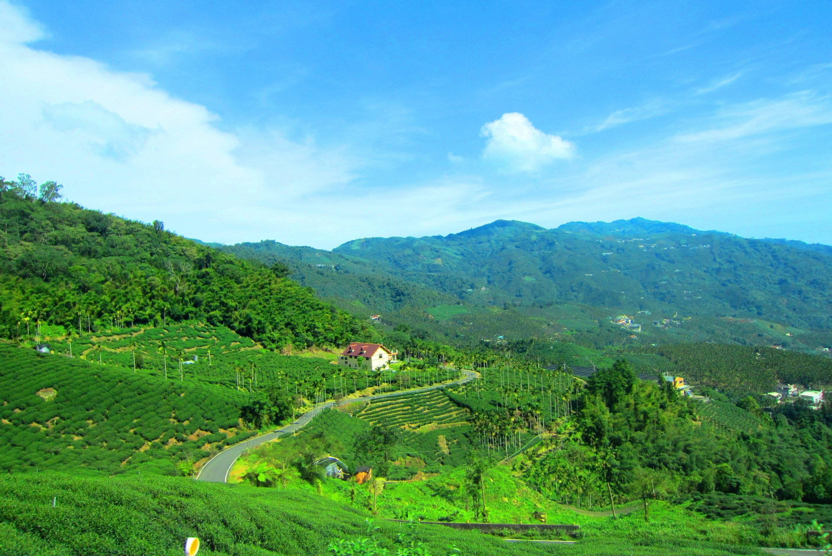 Lush green mountains photo