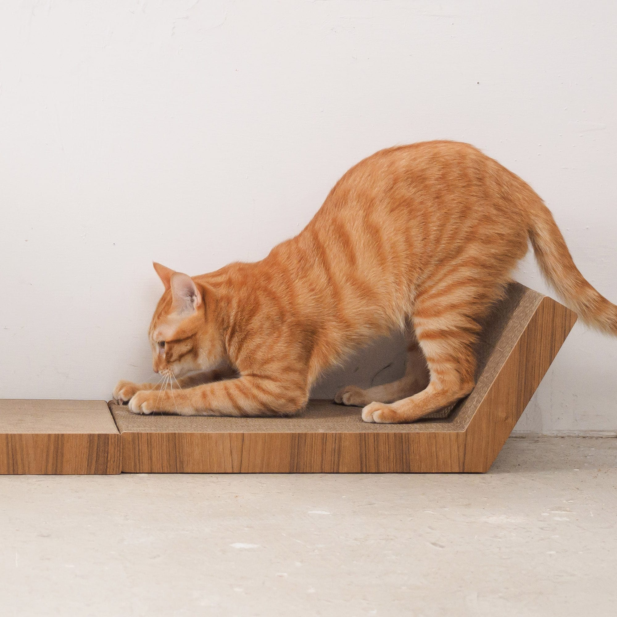 KATRIS Lynks Cat Scratcher - Free Shipping Today - Overstock - 21132425