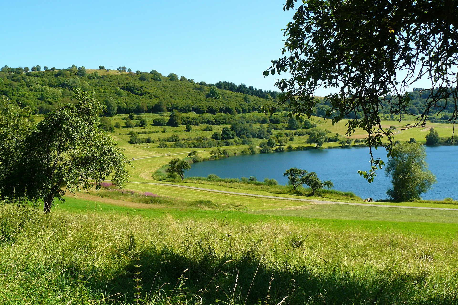 Maar, Green, Greenery, Lake, Landscape, HQ Photo