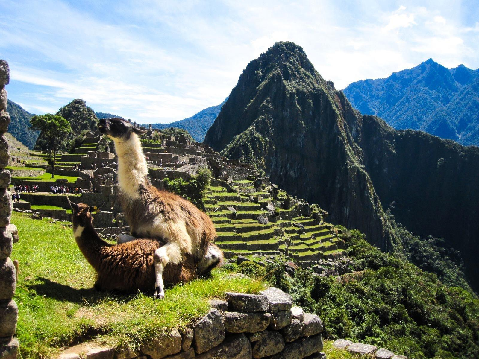 Majestic photo of Machu Picchu : pics