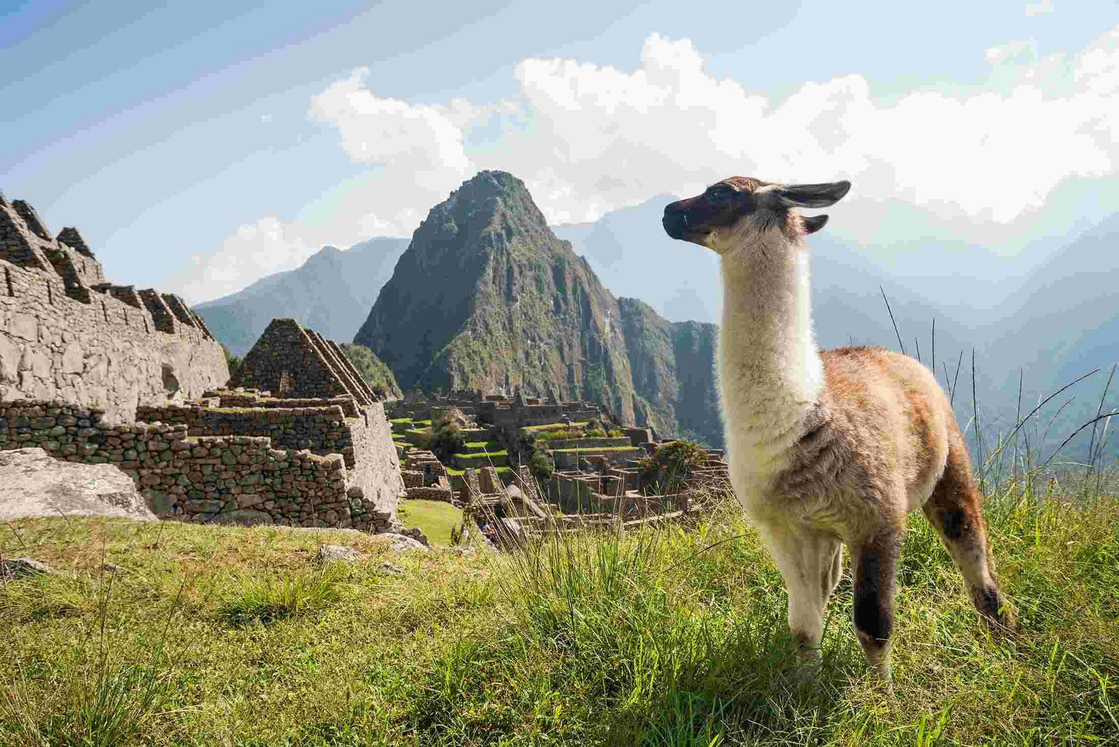 Top 10 Machu Picchu Tours & Trips 2018/19 | Geckos Adventures US