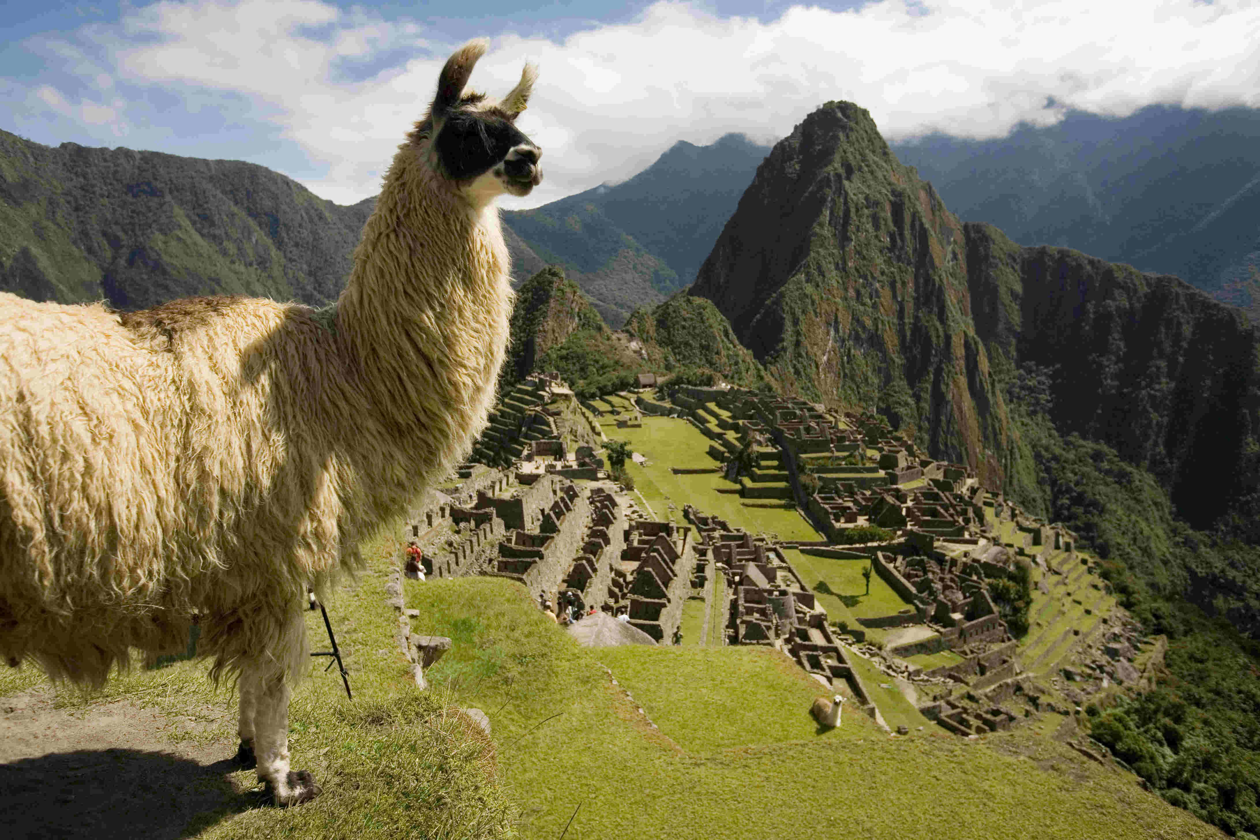 Machu Picchu Archaeological Park