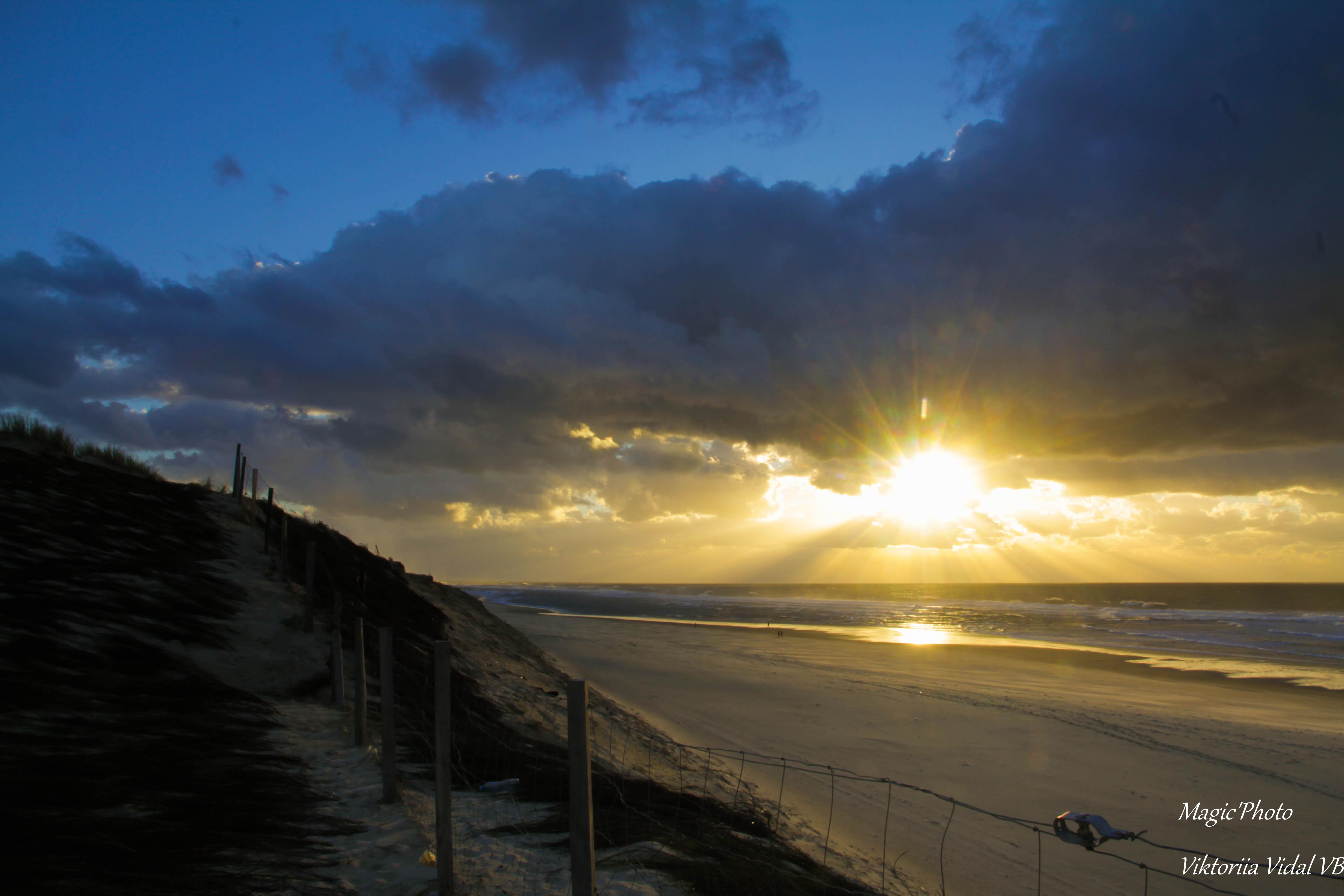 Magnifiques plages landaise photo