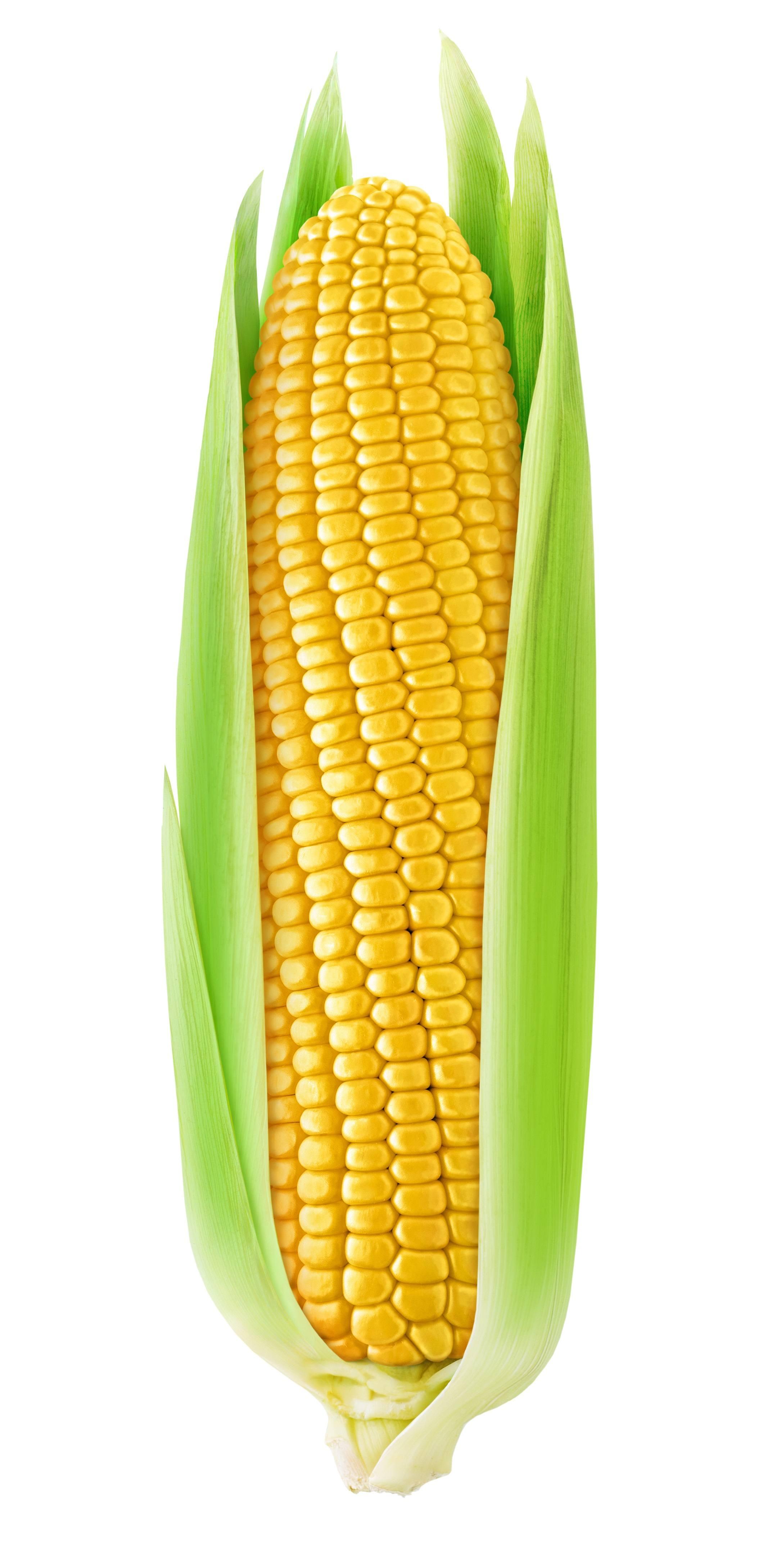 20 beneficios del maíz para la salud - ViviendoSanos.com