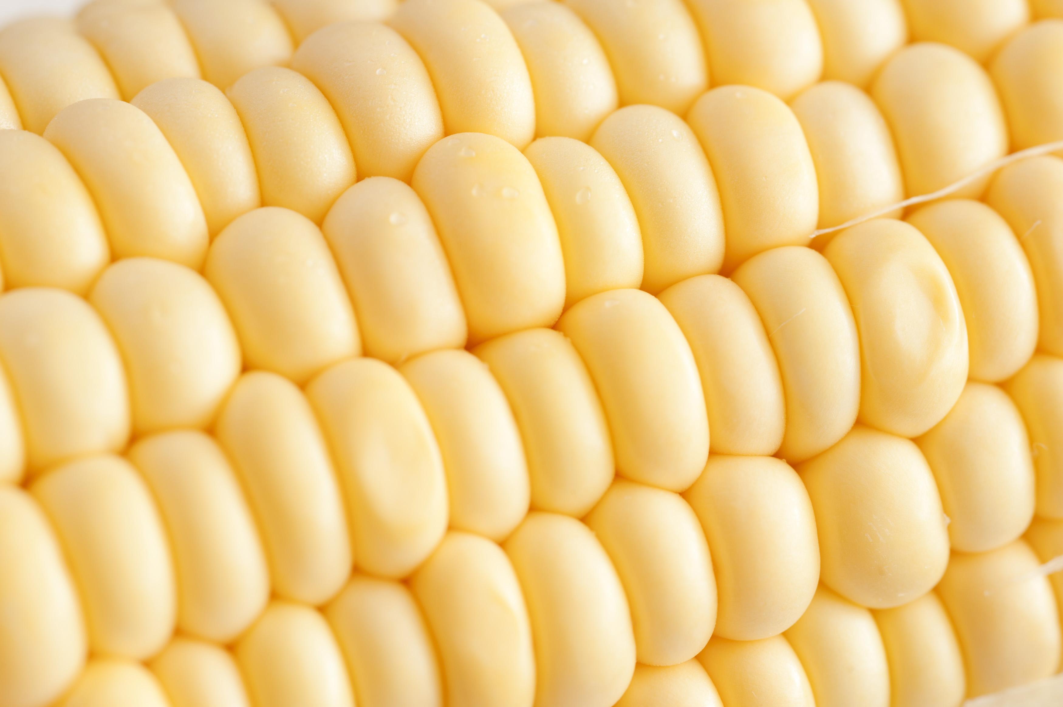 Maize texture photo
