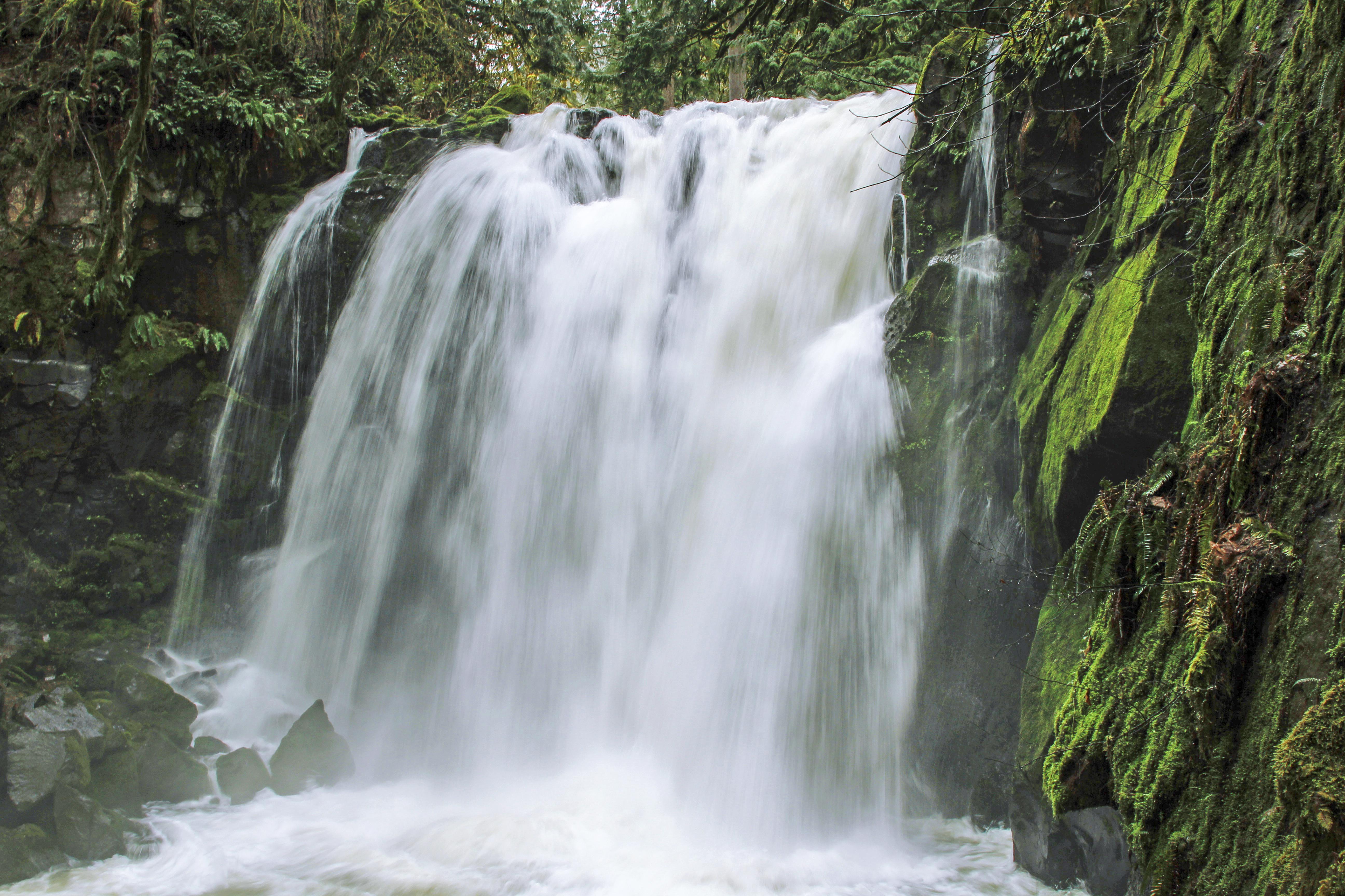 Majestic Falls , Waterfalls, Oregon, Creek, Falls, Forest, Majestic, HQ Photo