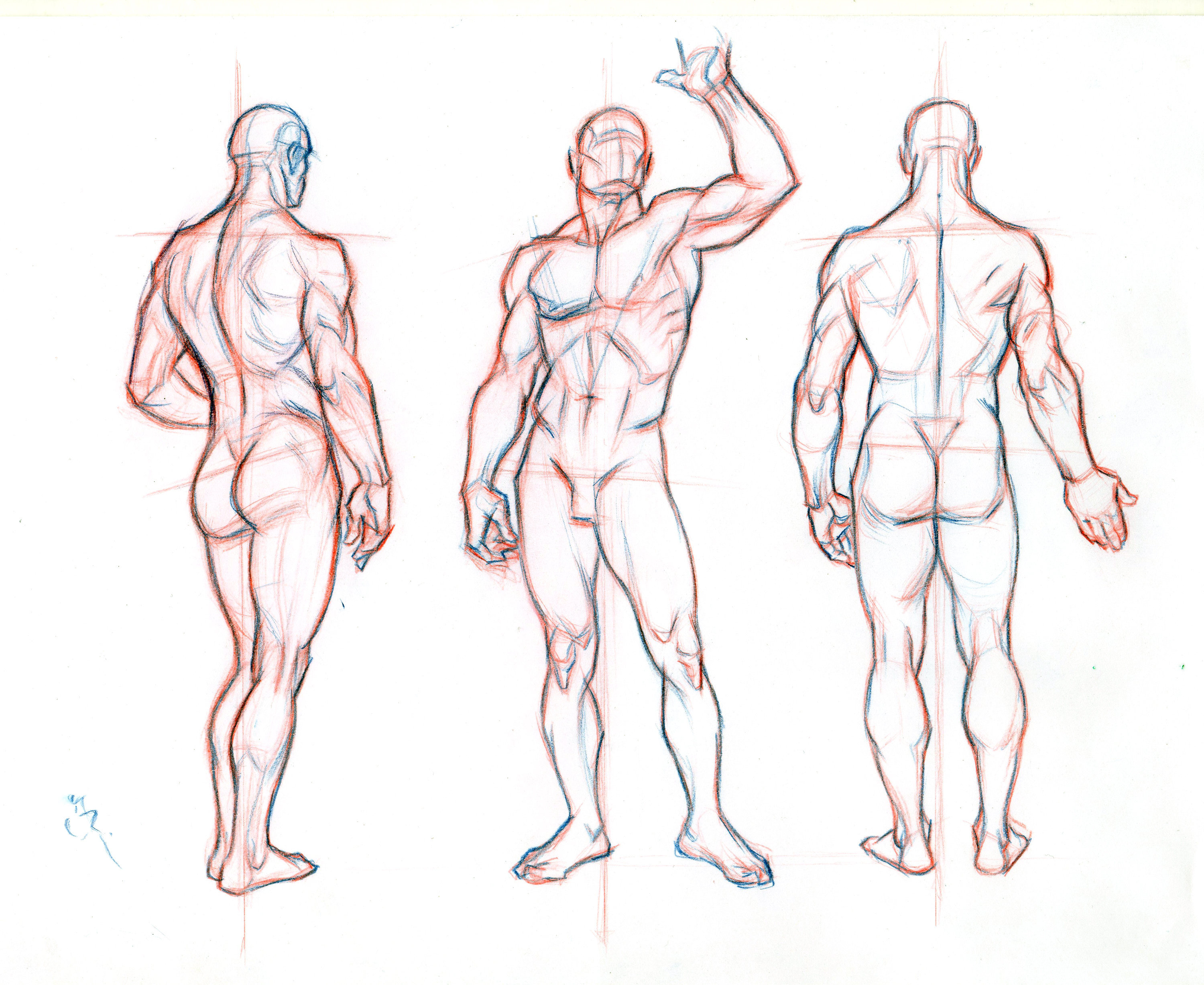 Male Model Drawing at GetDrawings.com | Free for personal use Male ...