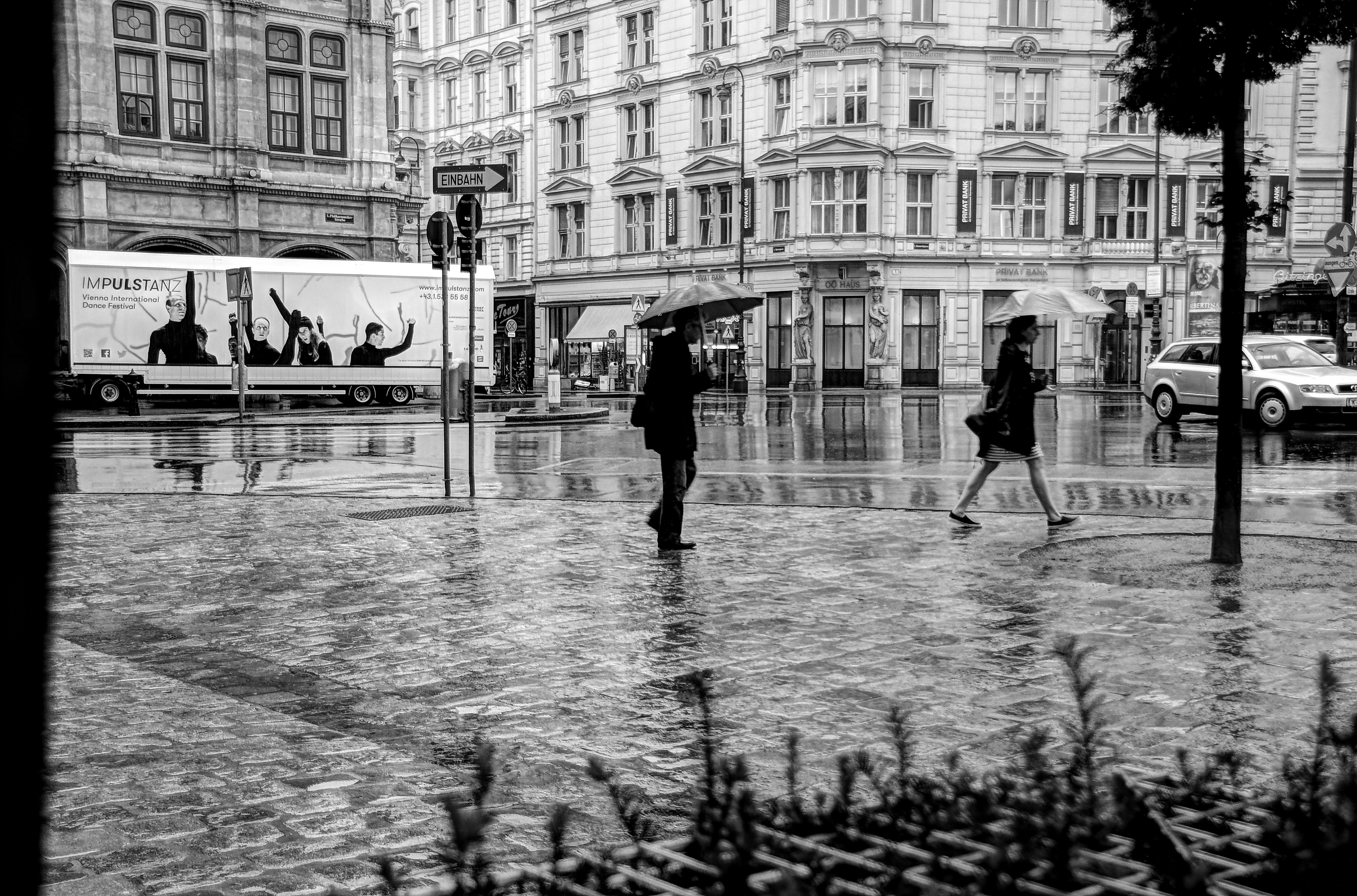 Man and woman walking on road while holding umbrella photo