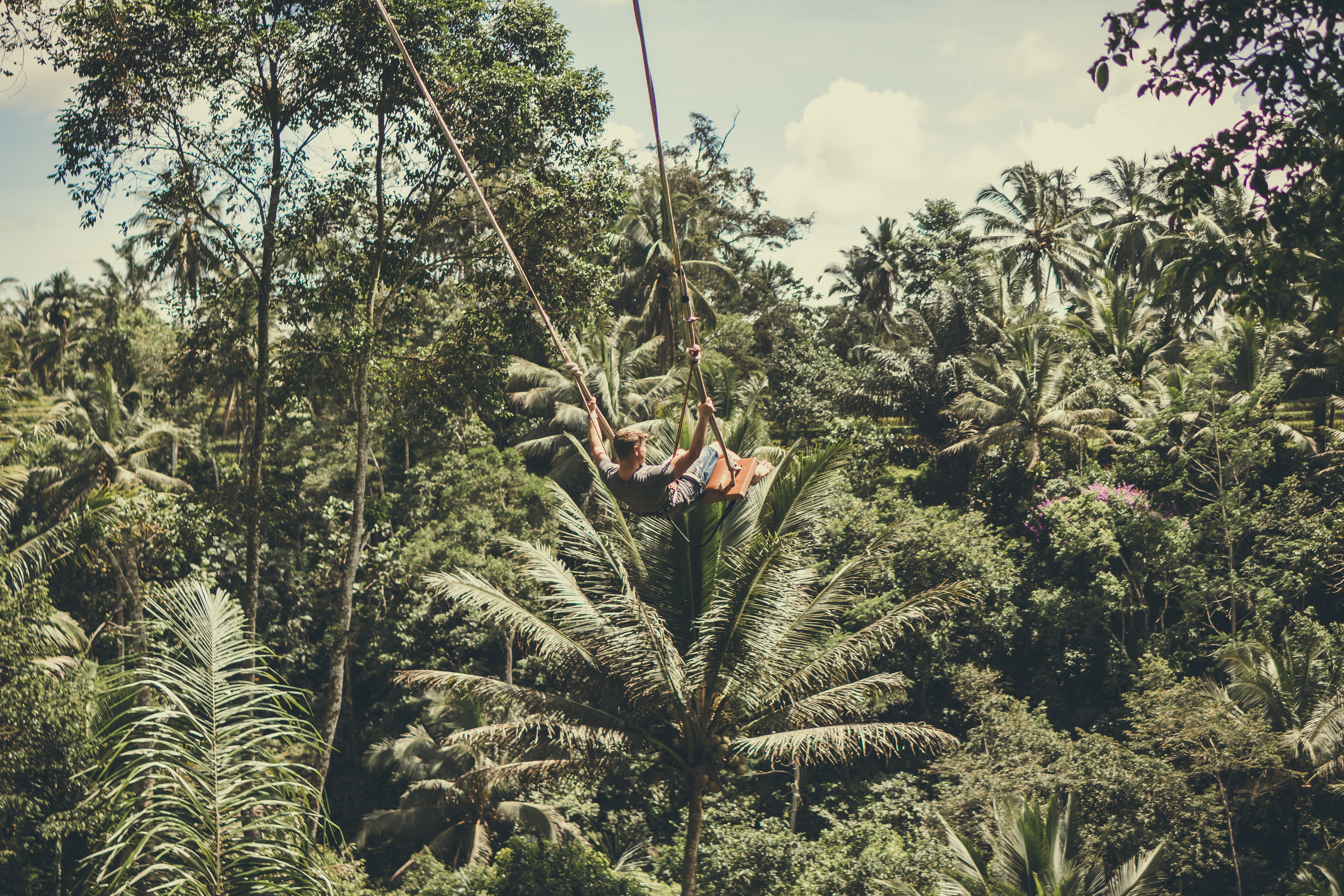 Man holding on rope in forest photo