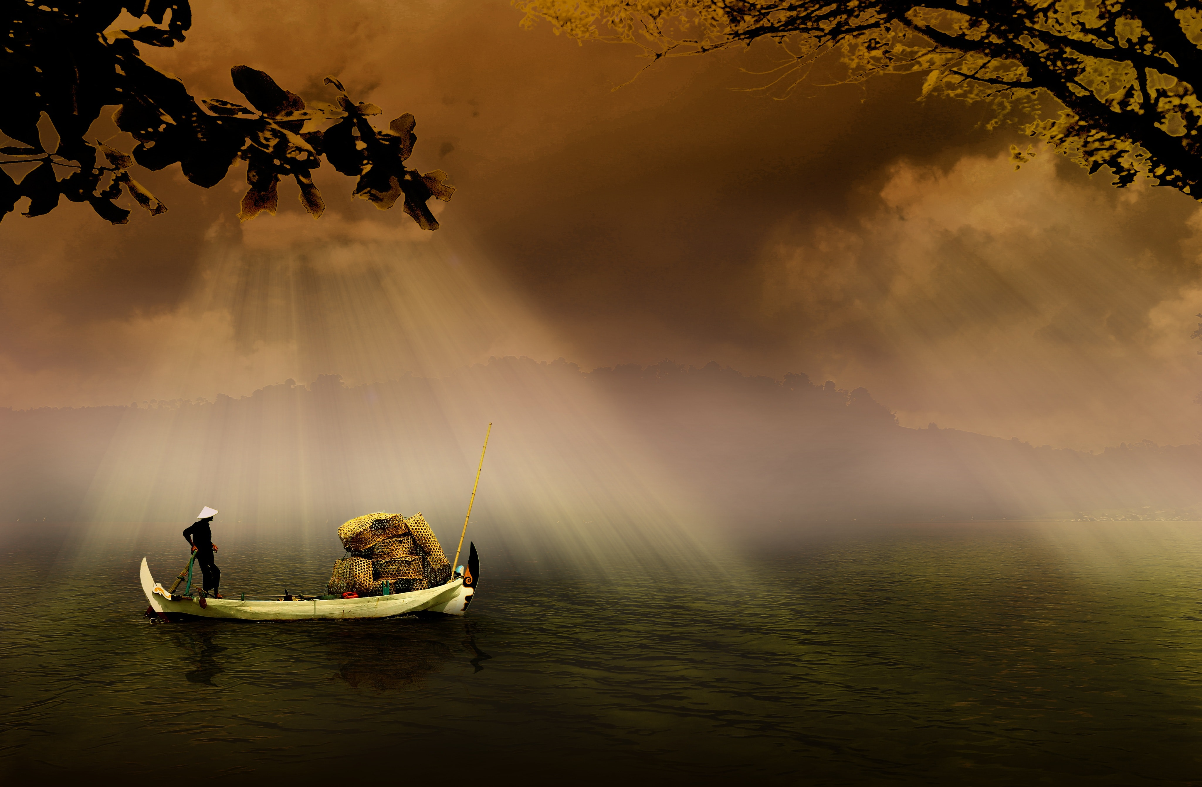 Man in a White Boat in Sea during Daytime, Bamboo, Murky, Tree branches, Traveling, HQ Photo