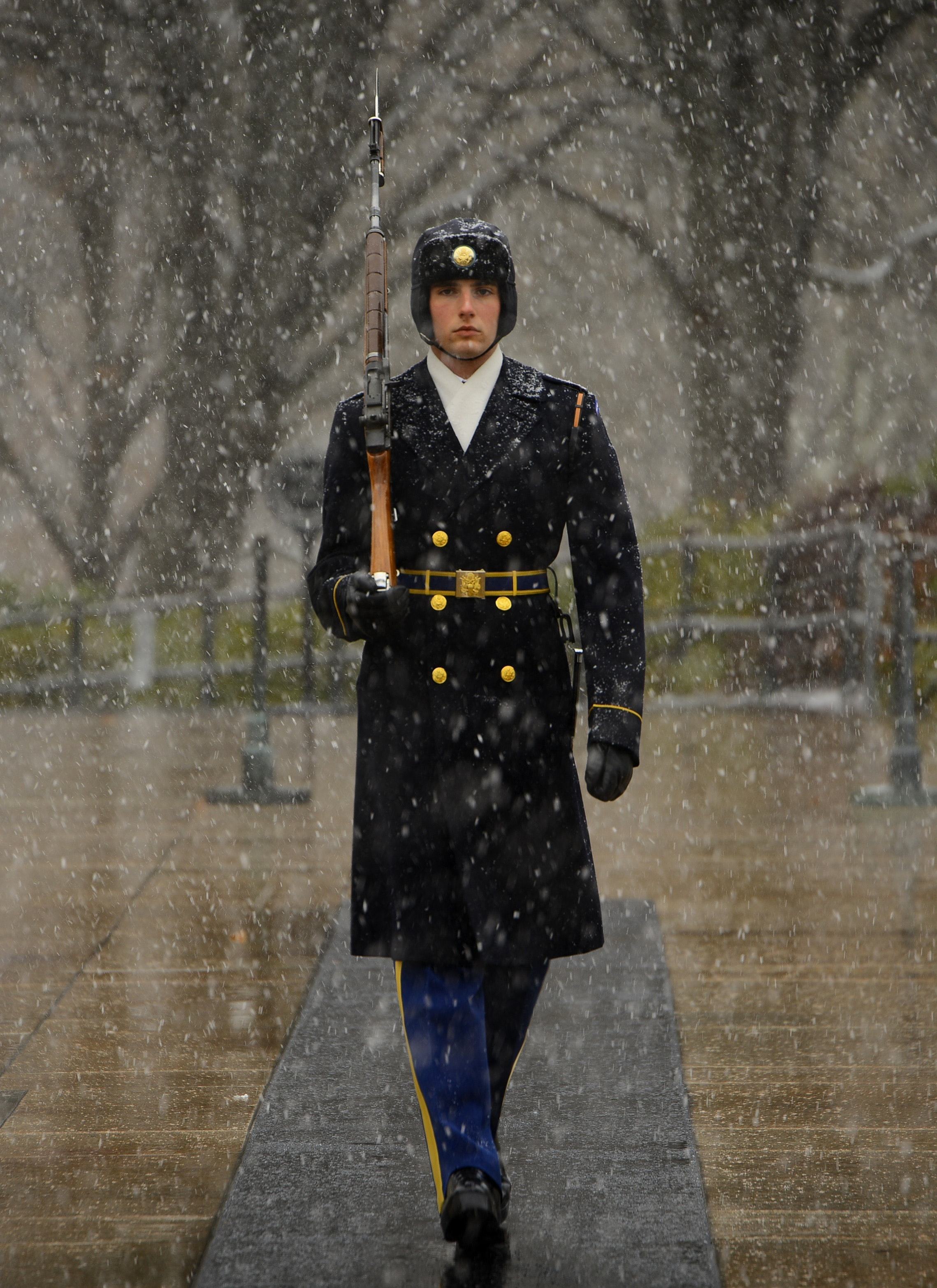 Man in Black Coat Carrying a Rifle Walking in Straight Line during Daytime, Sentinel, Winter, Virginia, Tomb, HQ Photo