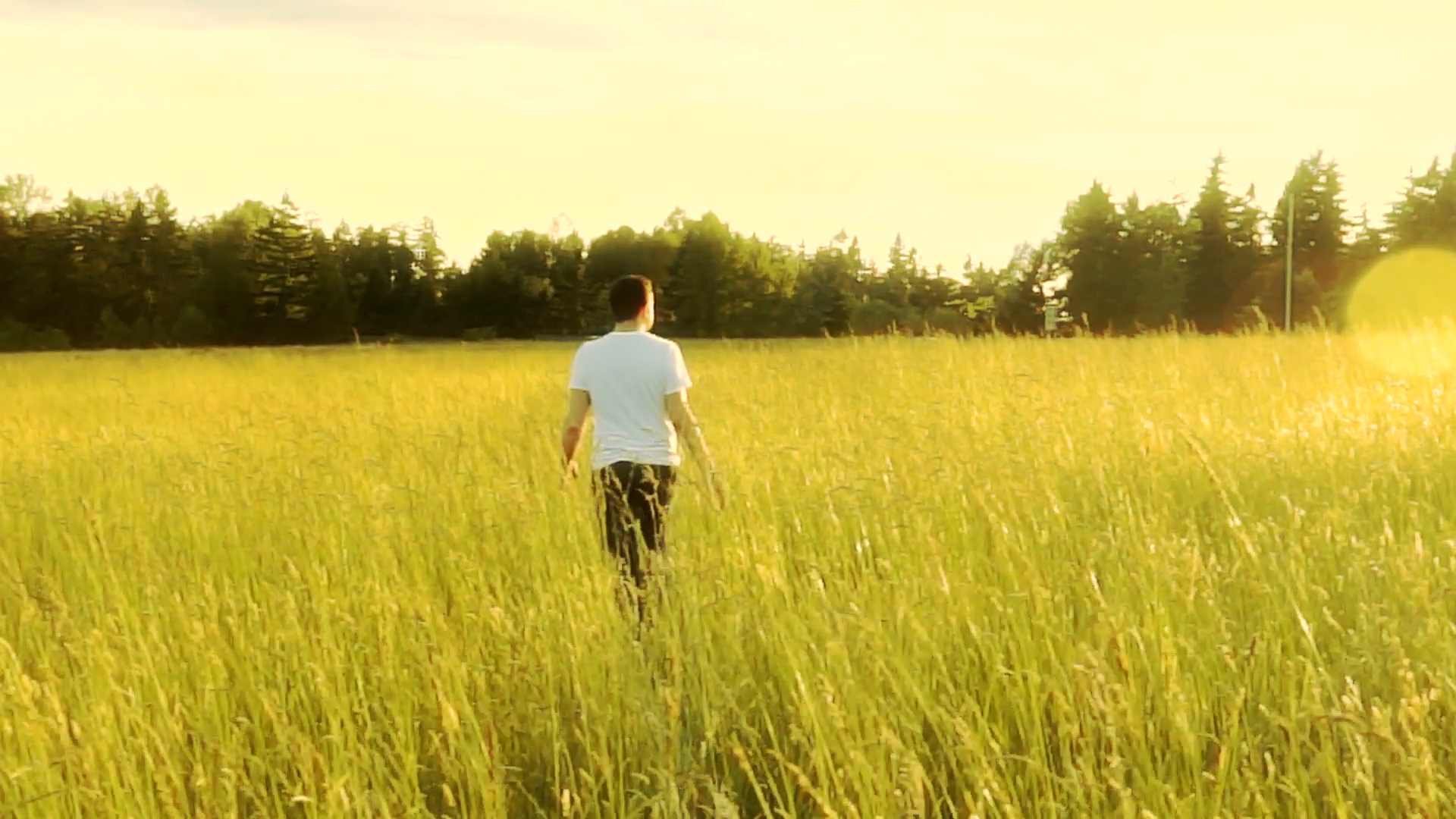 Free photo: Man in grass - Abstract, Man, Model - Free Download - Jooinn