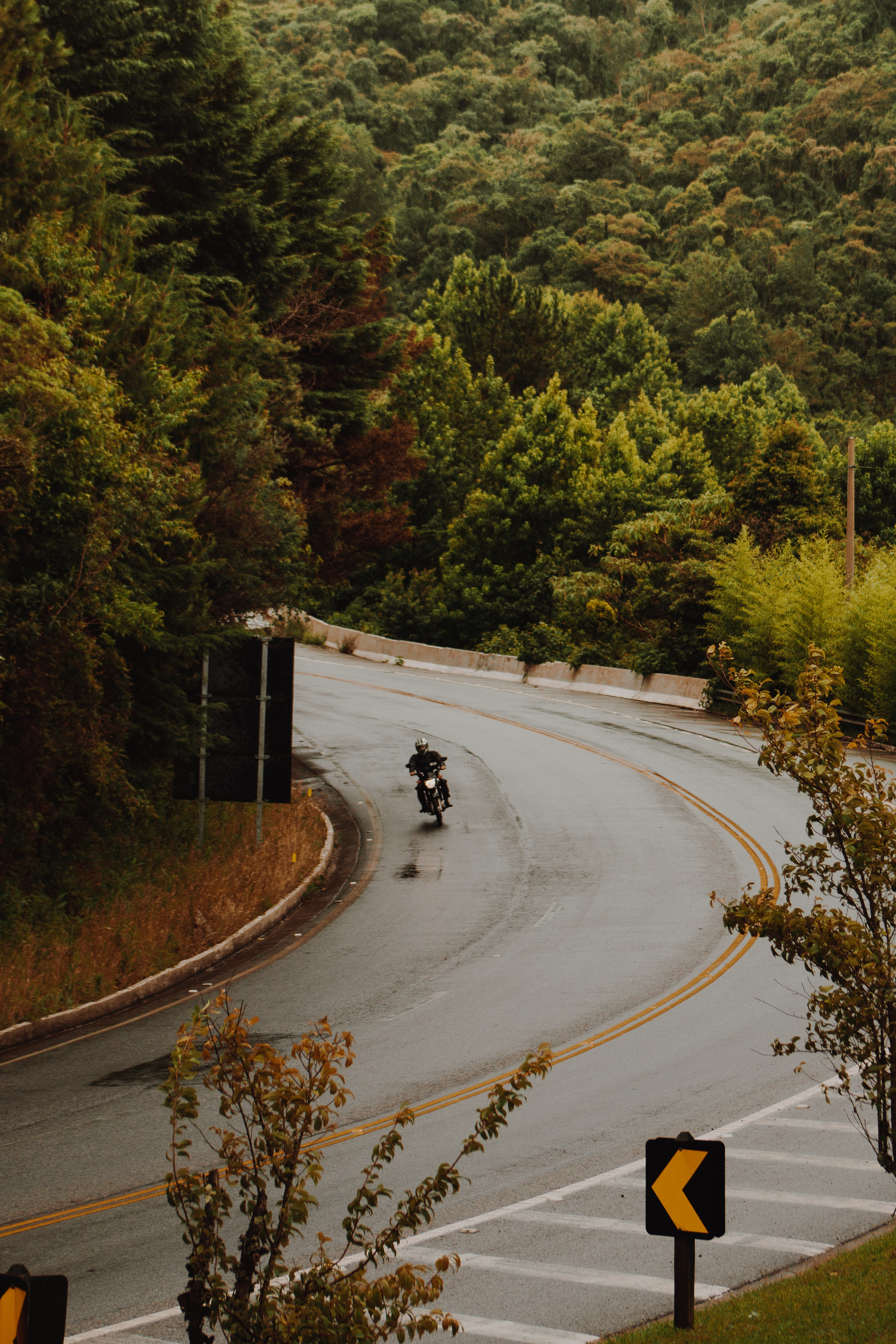 Man riding motorcycle on road photo