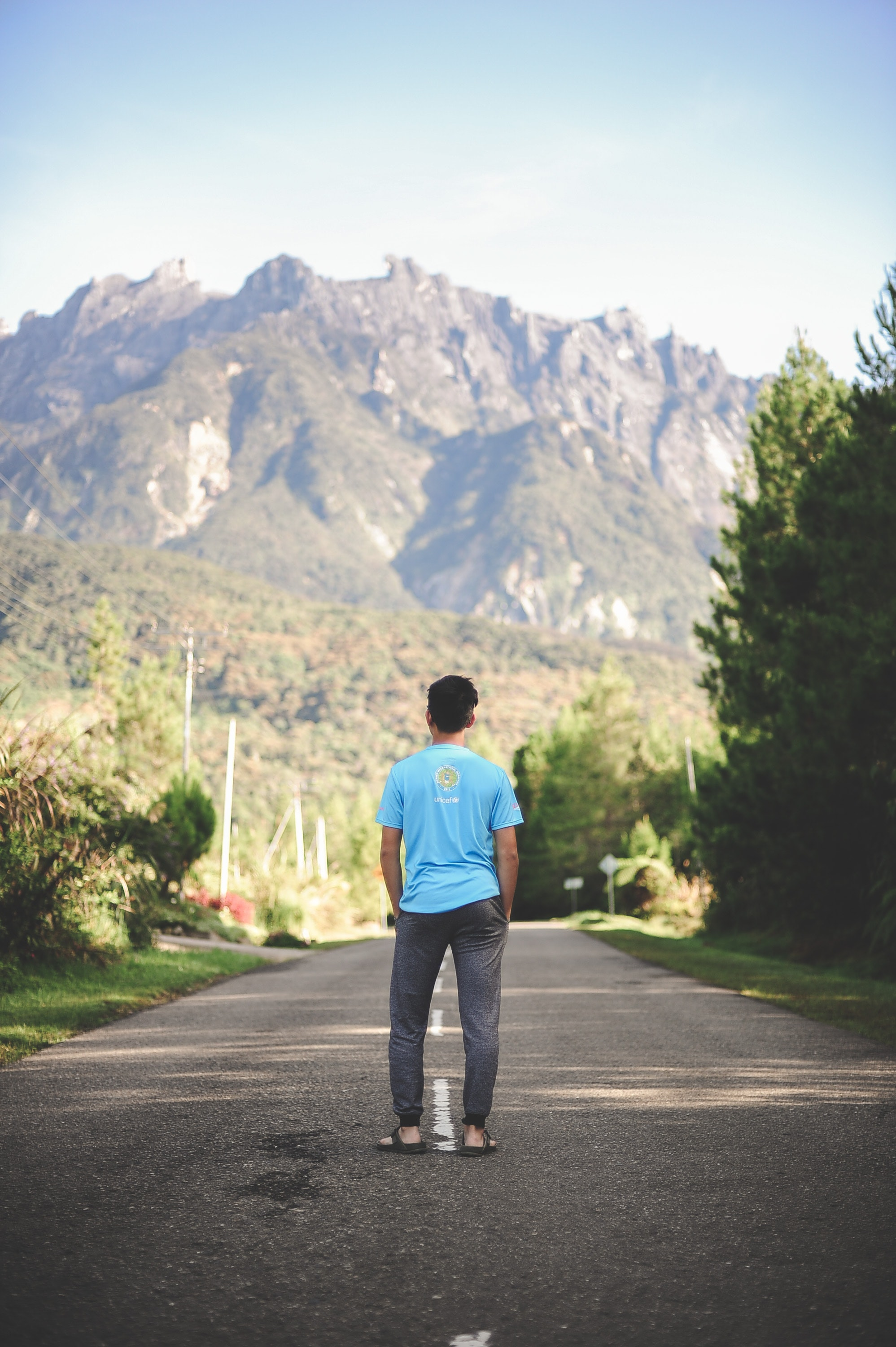 Man Standing on Road, Daylight, Environment, Grass, Landscape, HQ Photo