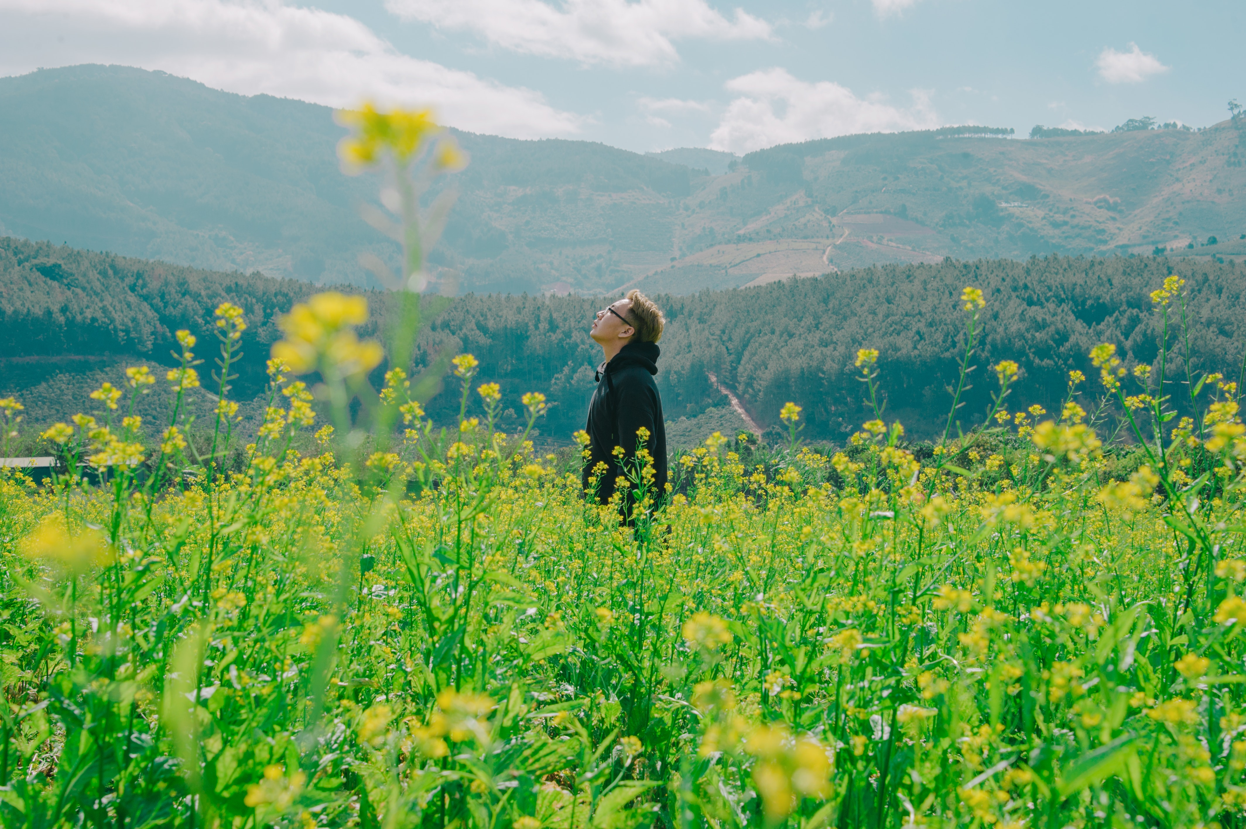 Free Photo Man Standing On Yellow Bed Of Flowers Rural Person