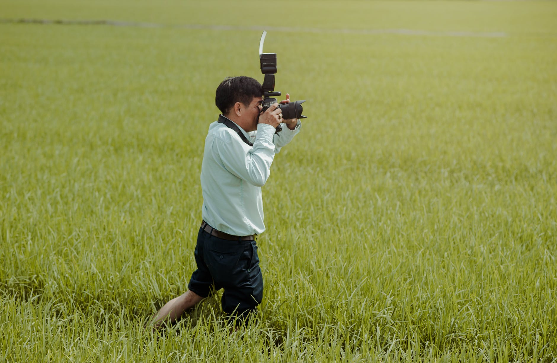 Man Taking Photos in the Field, Man Taking Photos in the Field