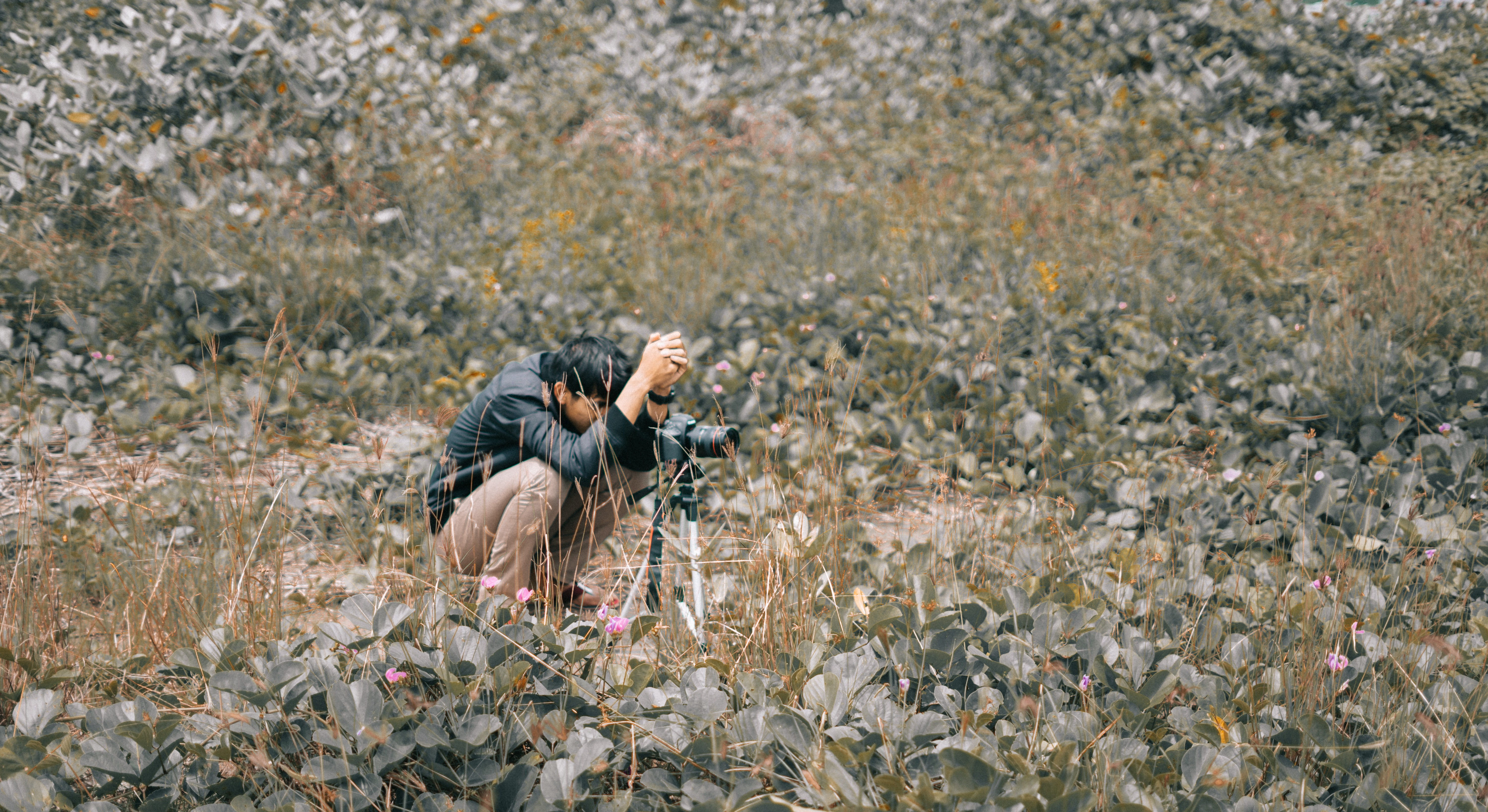 Man Wearing Black Jacket Squatting on Grass Field, Camera, Nature, Scenic, Rural, HQ Photo