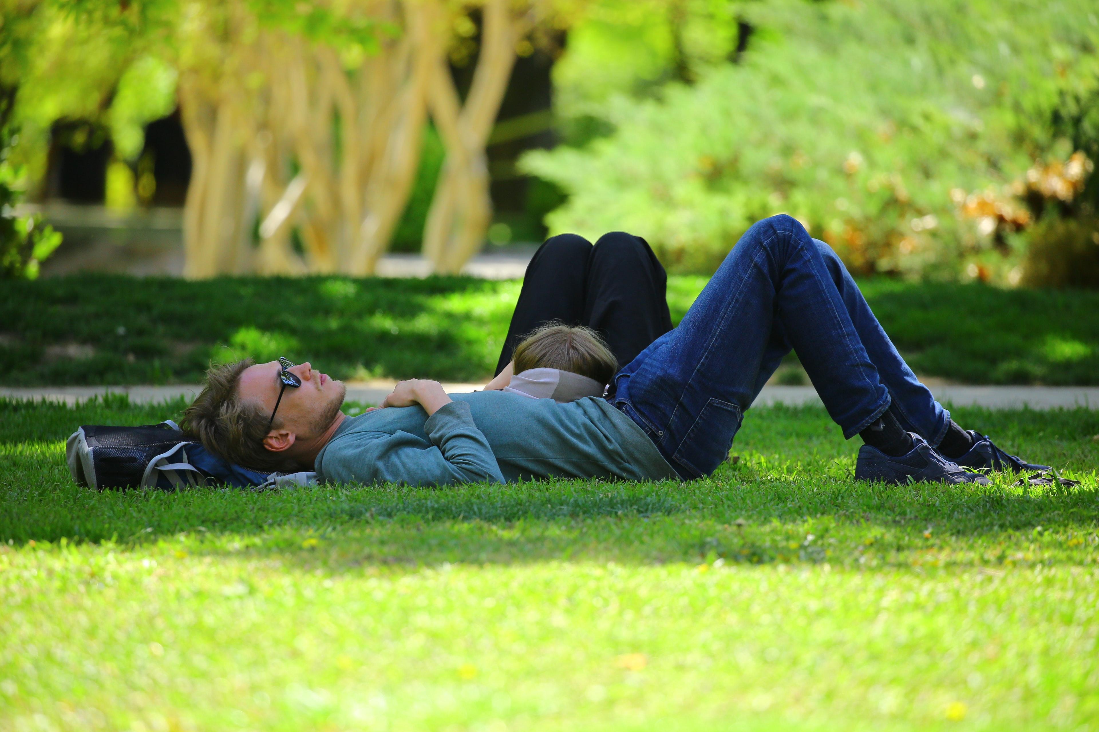 Man Wearing Blue Long Sleeve Shirt Lying on Ground during Daytime, Adult, Park, Summer, Sleep, HQ Photo
