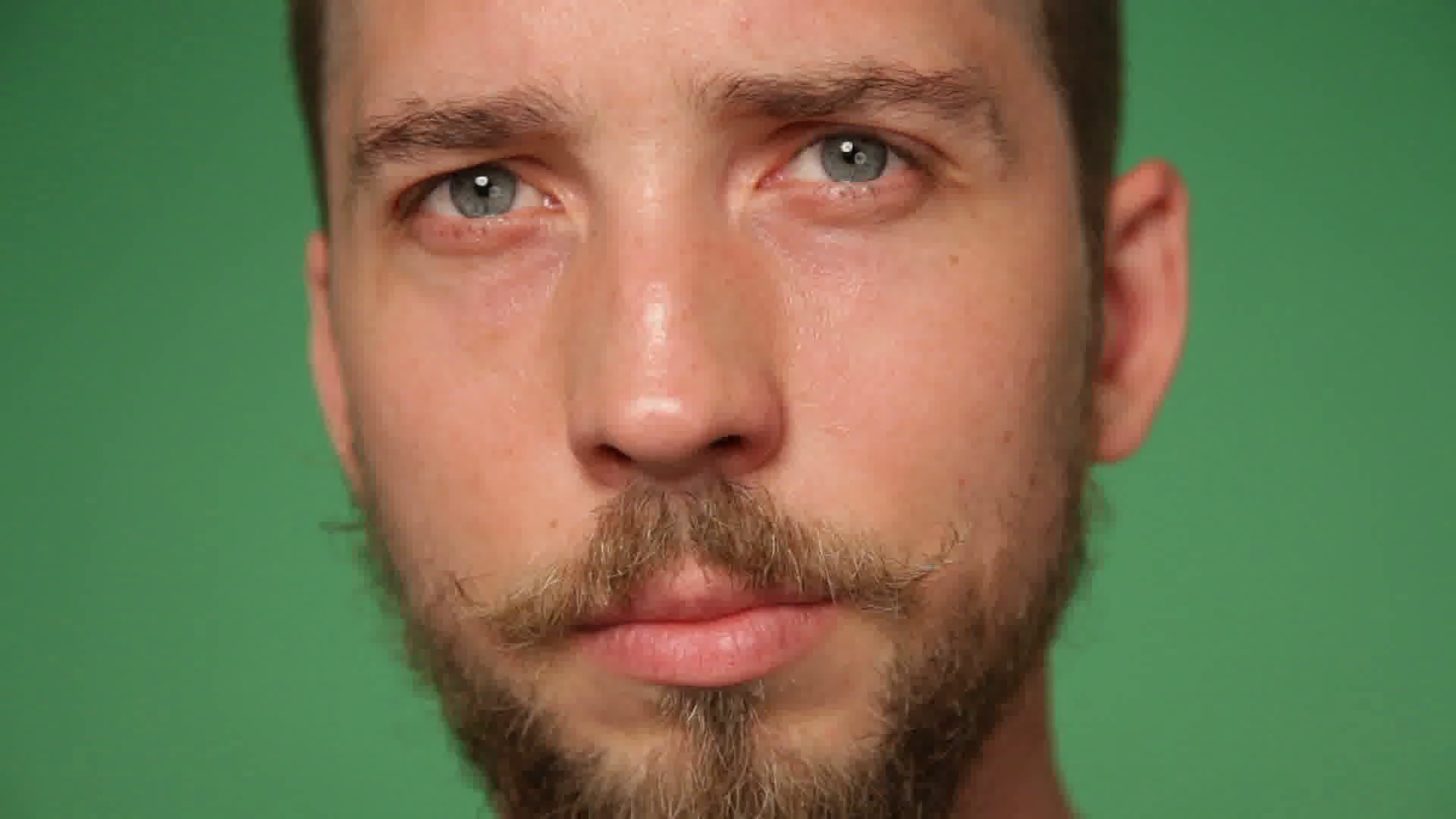 Close up man's face with trendy beard and mustache, green screen ...