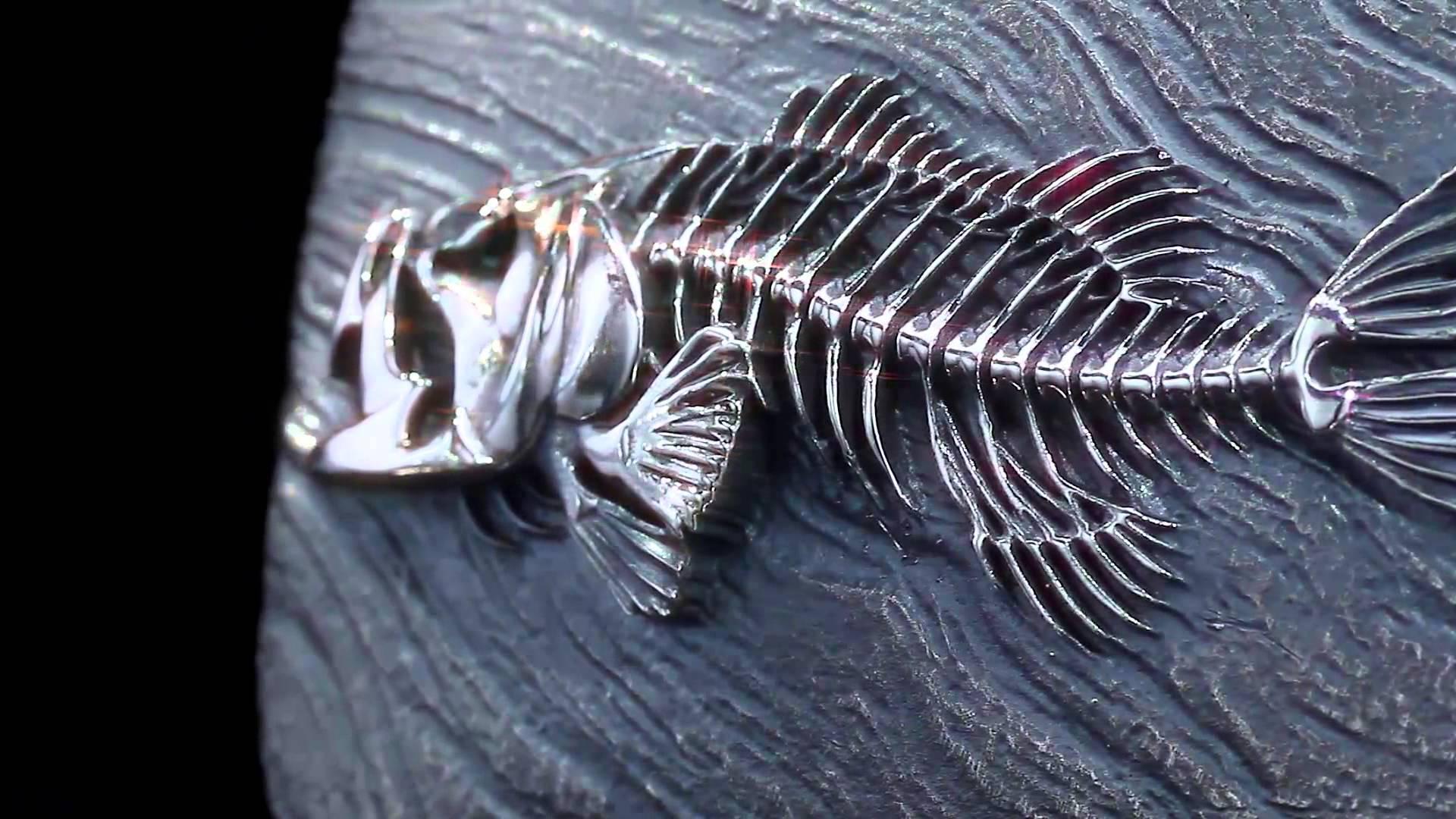 Skeleton Fish Belt Buckle - YouTube