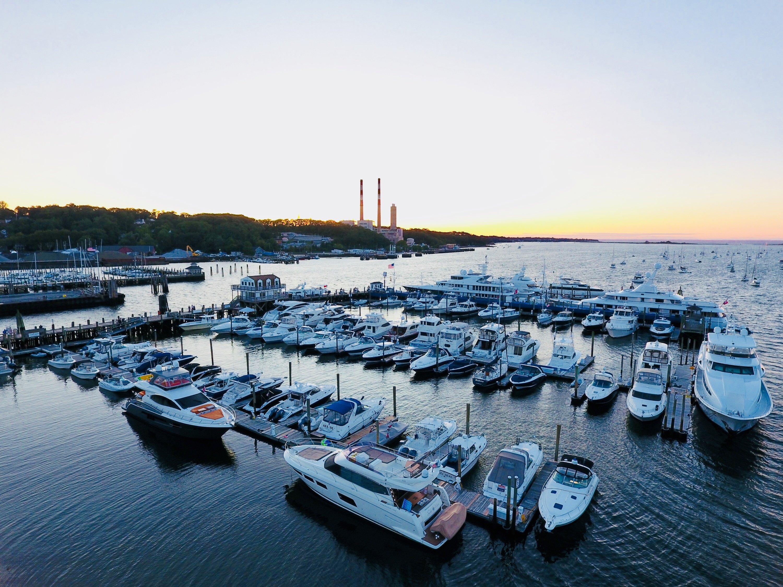 free photo marina palm yacht harbor free download jooinn