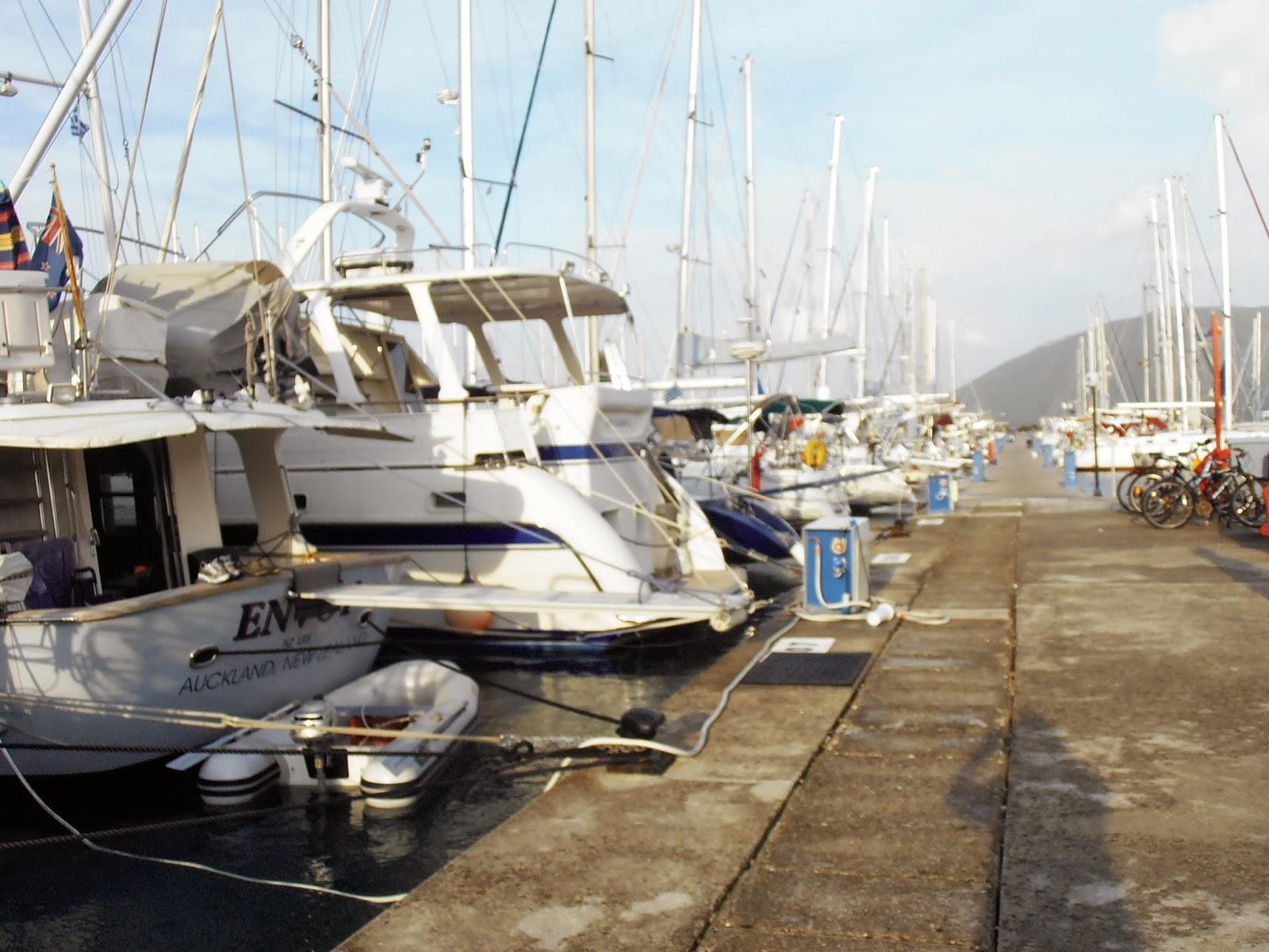 Marina in winter photo