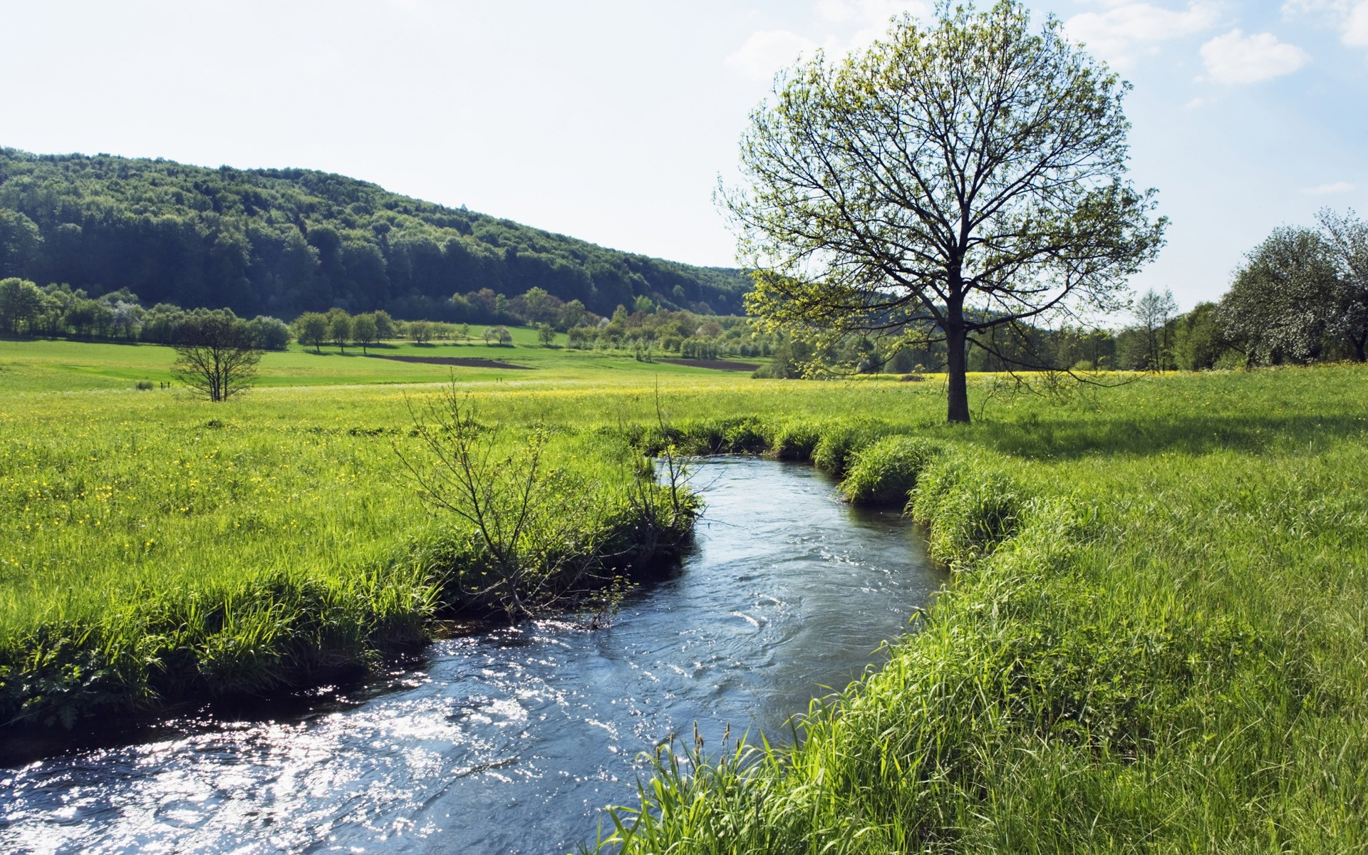 Rivers: Germany River Meadow Bavaria Running Bayern Fields Desktop ...