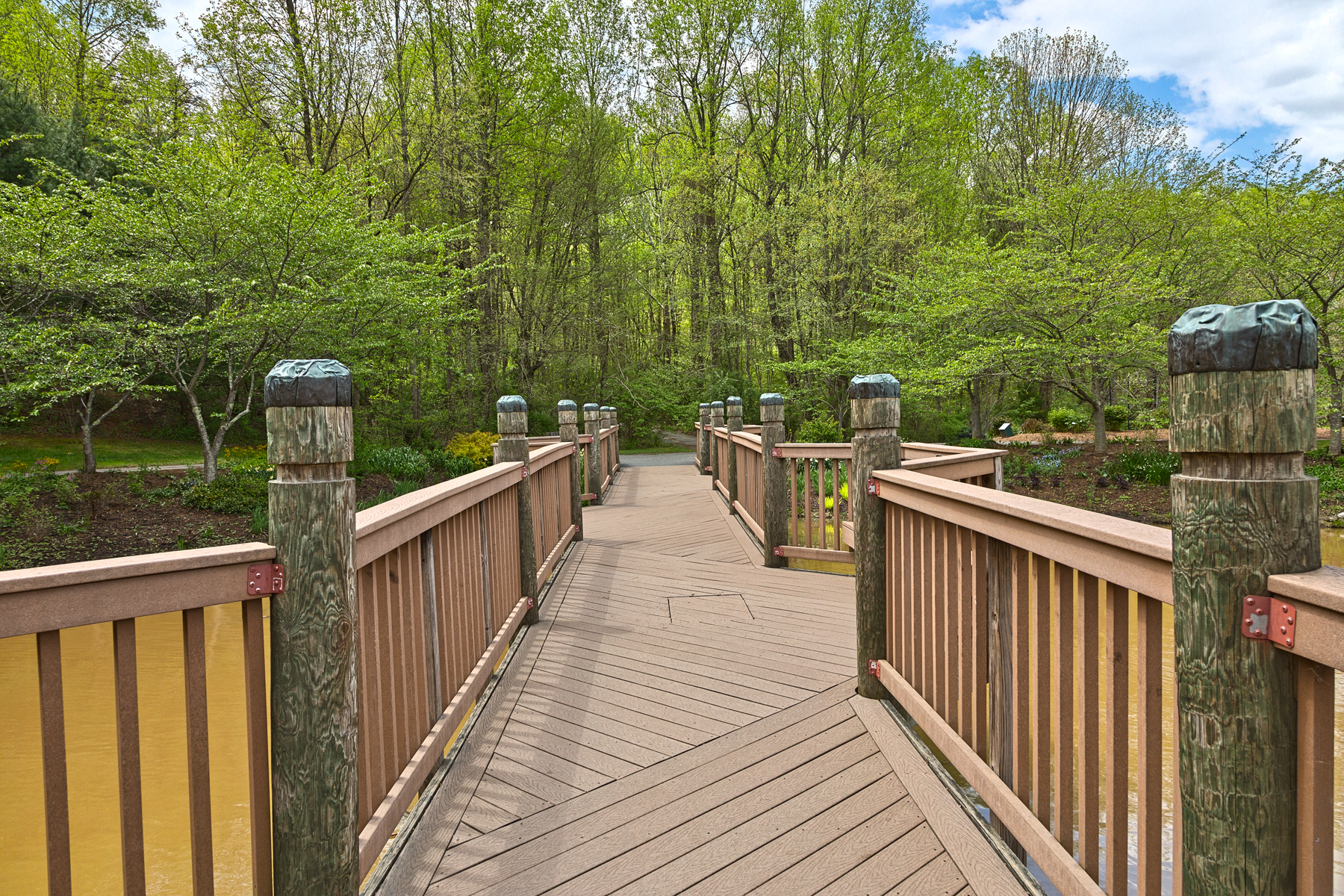 Meadowlark gardens bridge - hdr photo