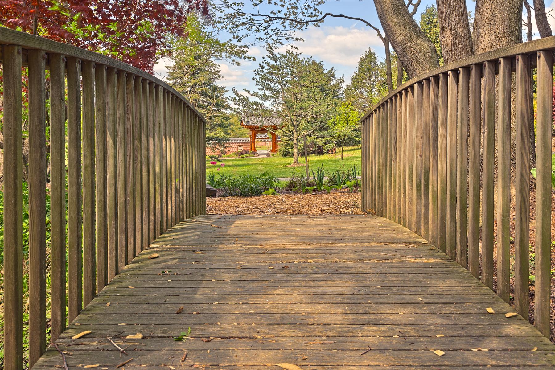 Meadowlark Gardens Bridge - HDR, America, Plant, Serene, Scenic, HQ Photo