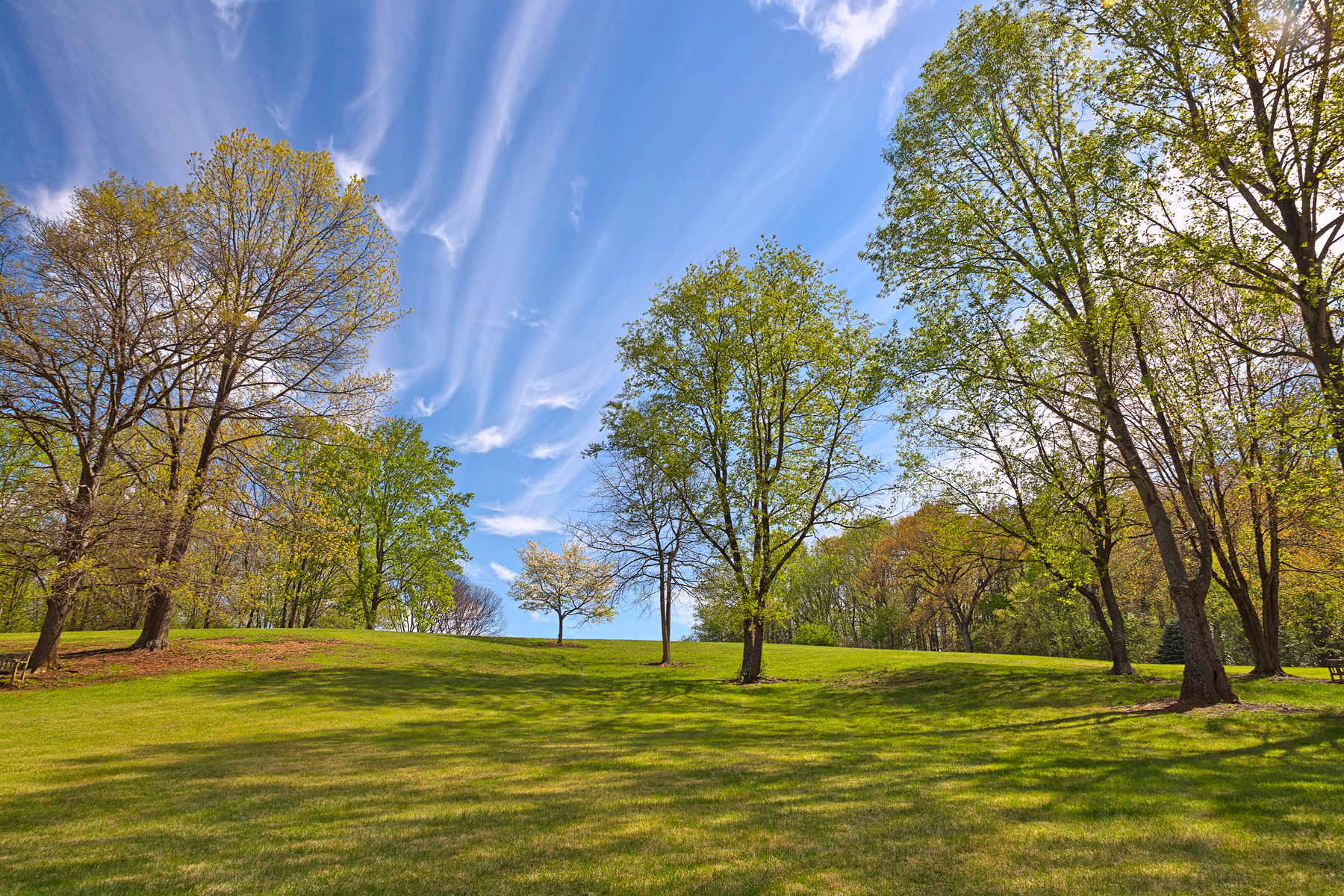 Meadowlark gardens - hdr photo