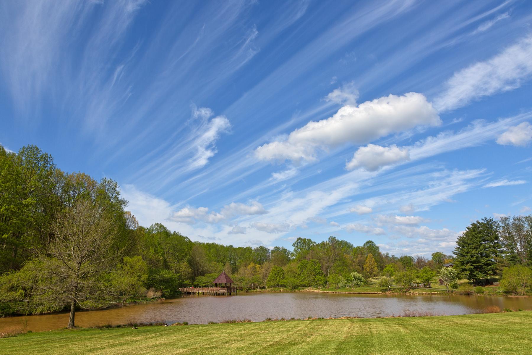 Meadowlark Gardens - HDR, Scenery, Shadows, Shadow, Shades, HQ Photo