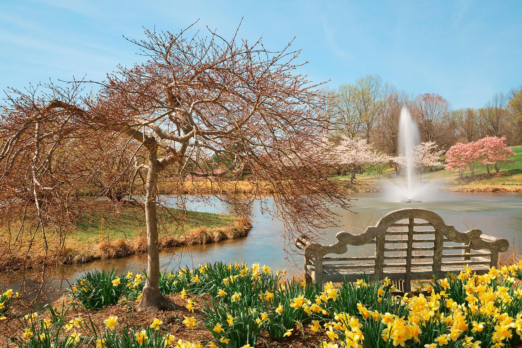 Free photo: Meadowlark Spring Gardens - seasonal, seat, season ...