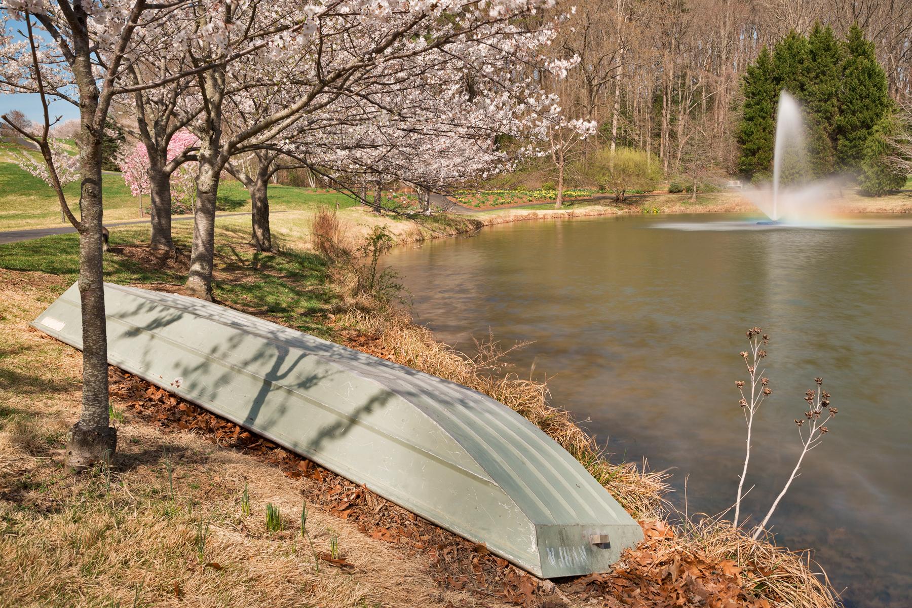 Meadowlark Spring Gardens, America, Pretty, Serenity, Serene, HQ Photo