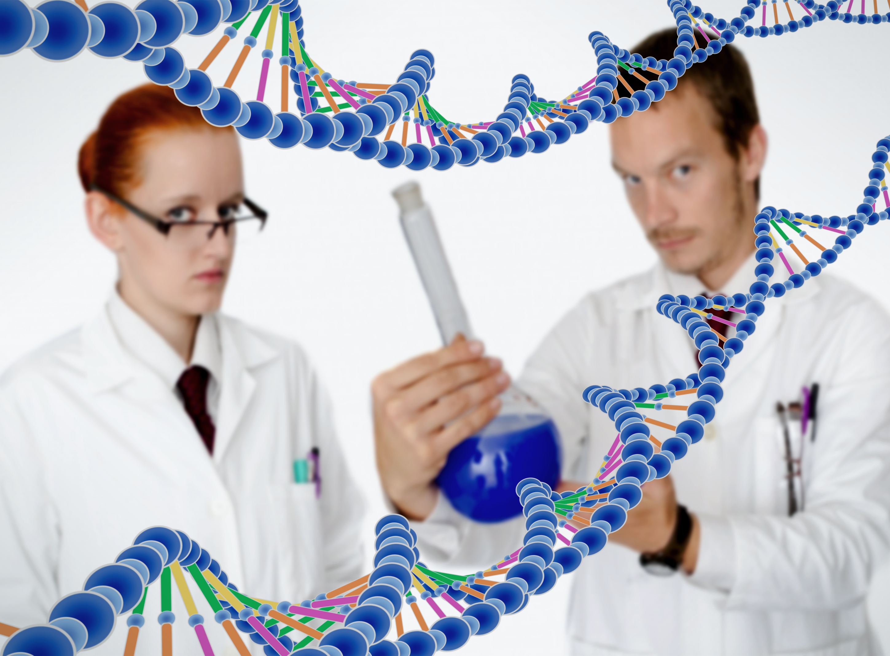 Medical doctors performing dna analysis photo