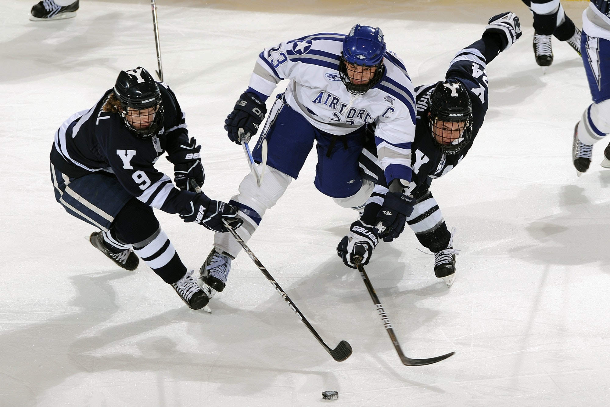 Men's in Blue and White Jersey Shirt Playing Hockey, Rink, Puck, Playing, Players, HQ Photo
