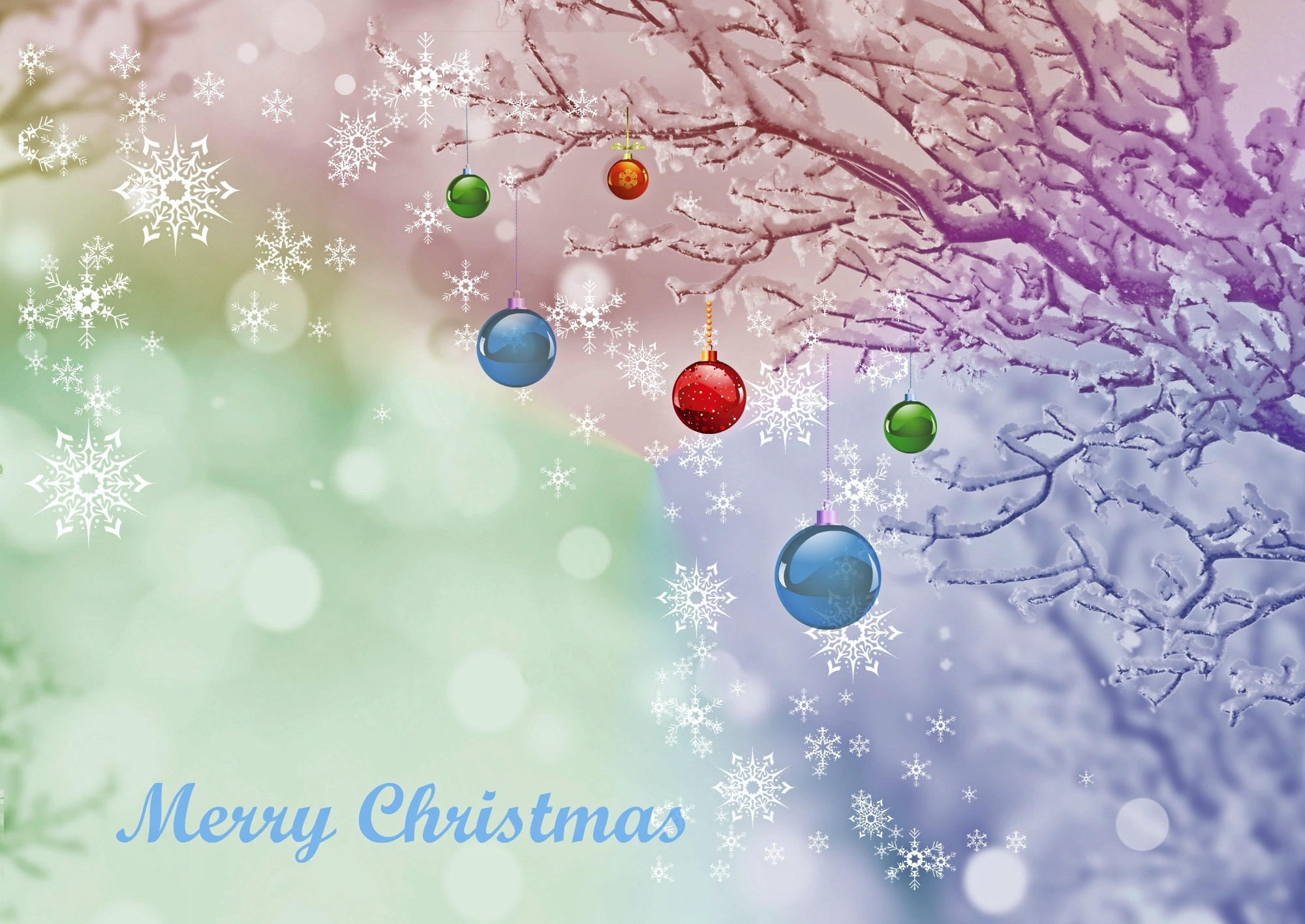 Merry Christmas, Card, Christmas, Event, Invitation, HQ Photo