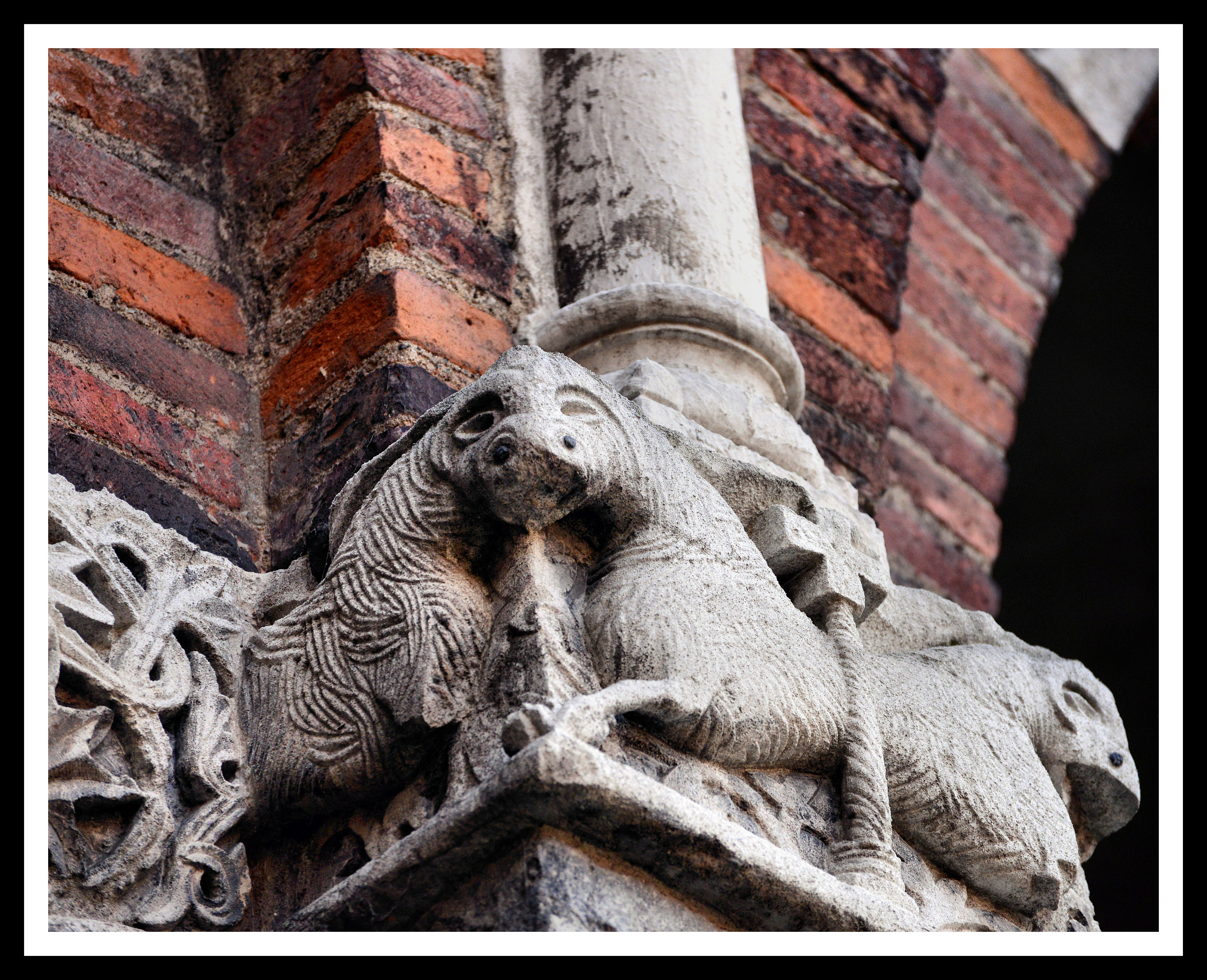 Milano, Basilica di Sant'Ambrogio, capitelli, 2018, Animal, Arte, Basilica, HQ Photo