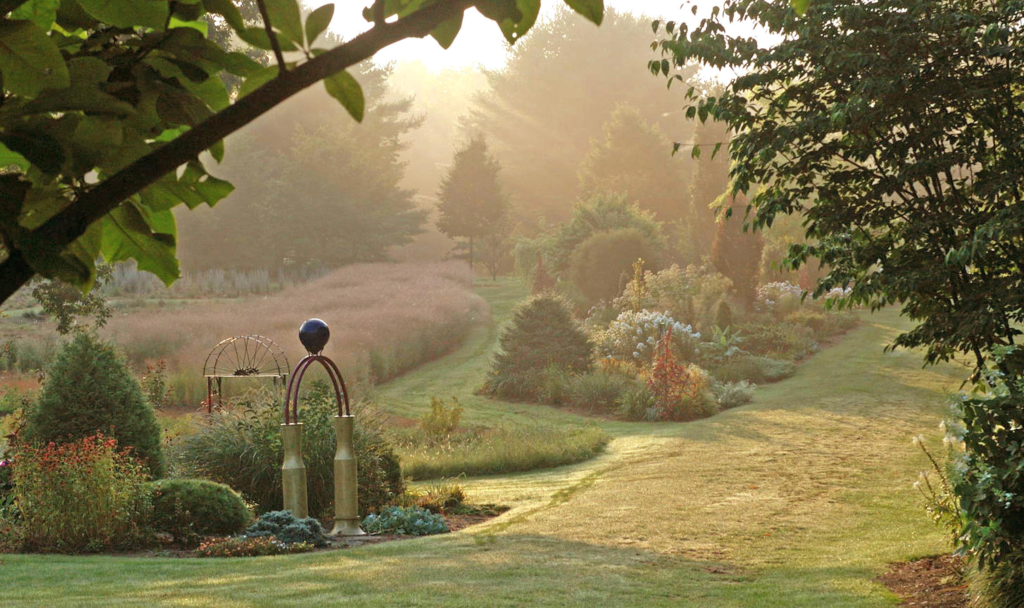 Misty garden photo