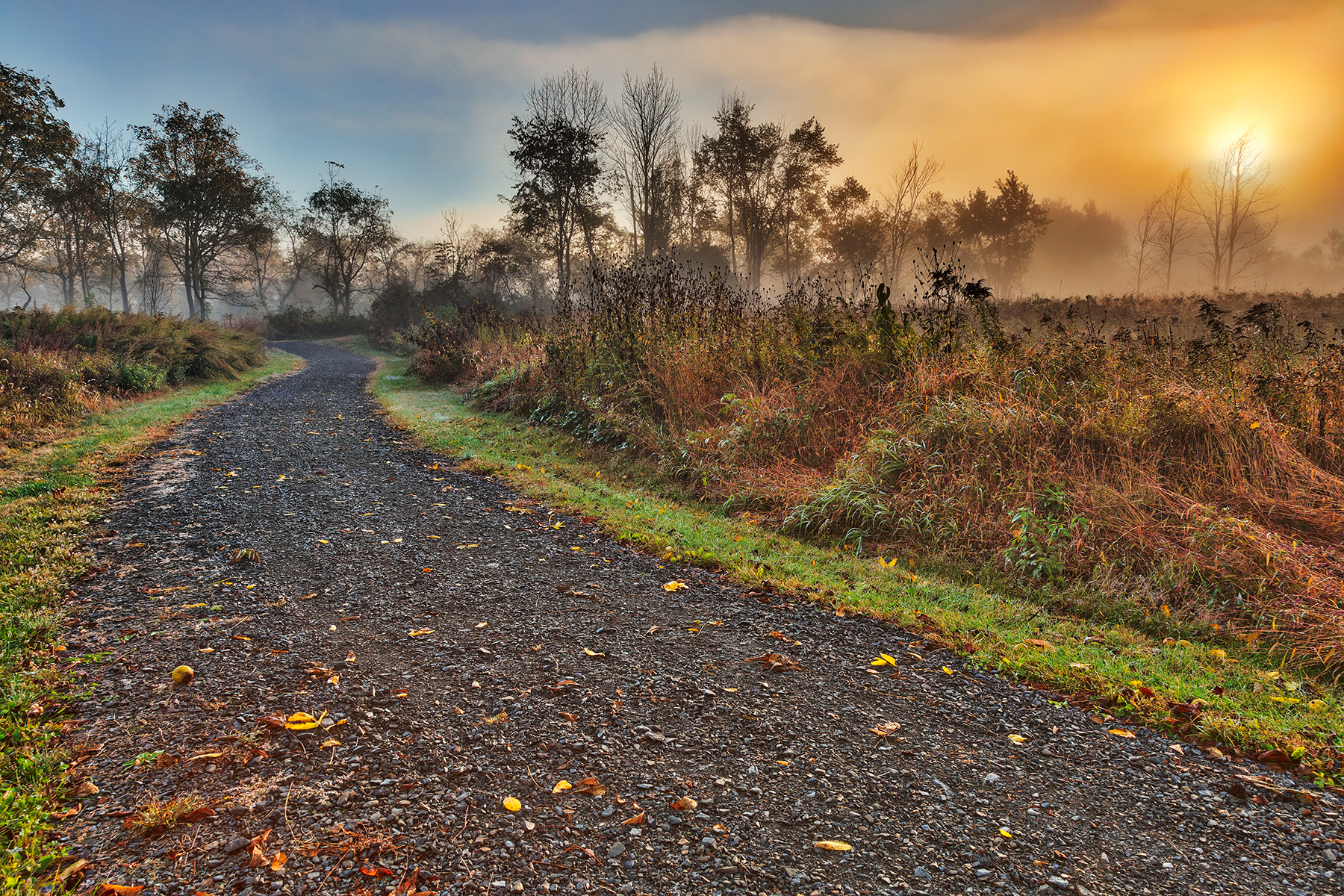 Misty mcdade sunrise - hdr photo