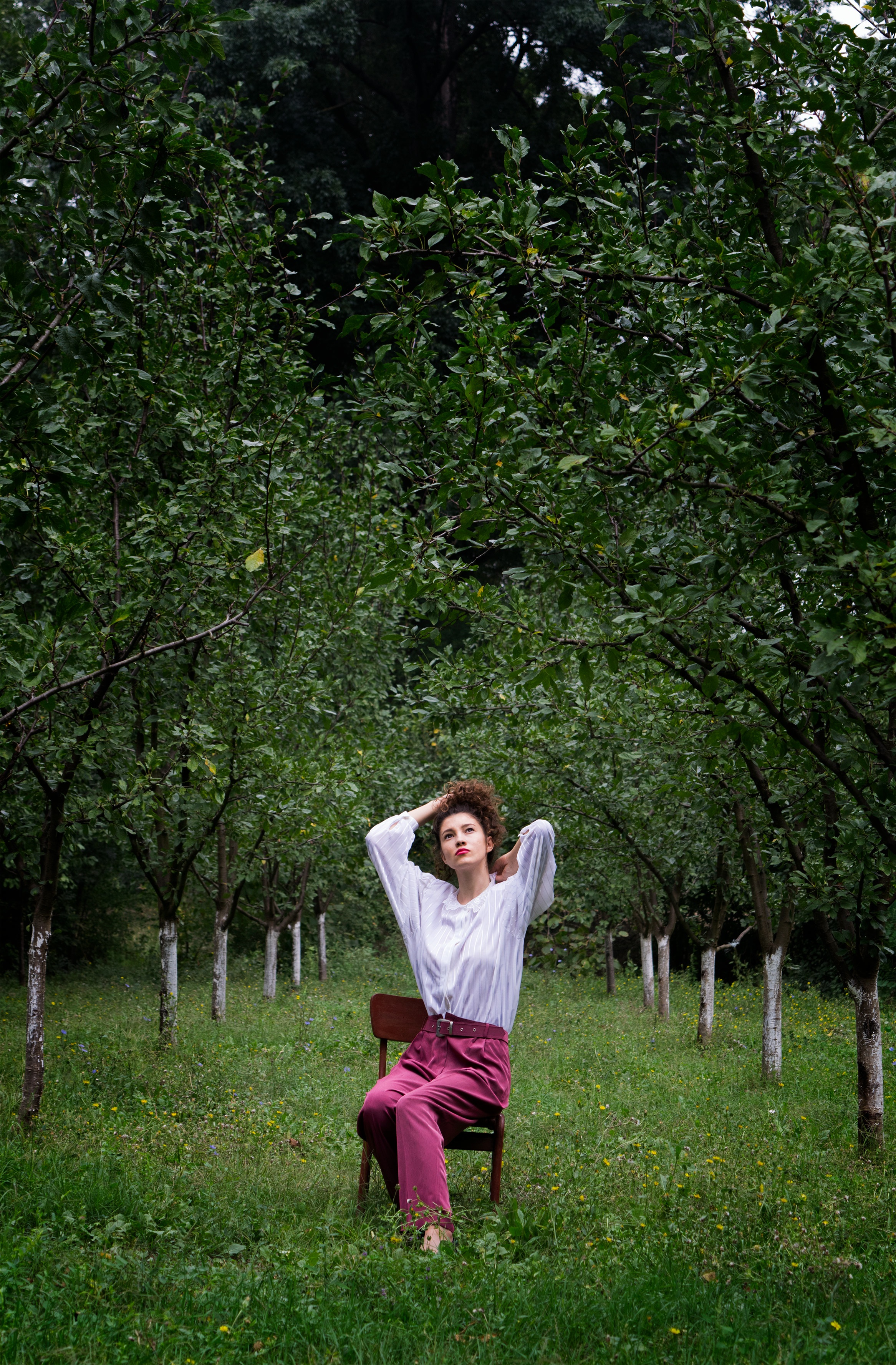 Model, Tree, Woman, Nature, Green, HQ Photo