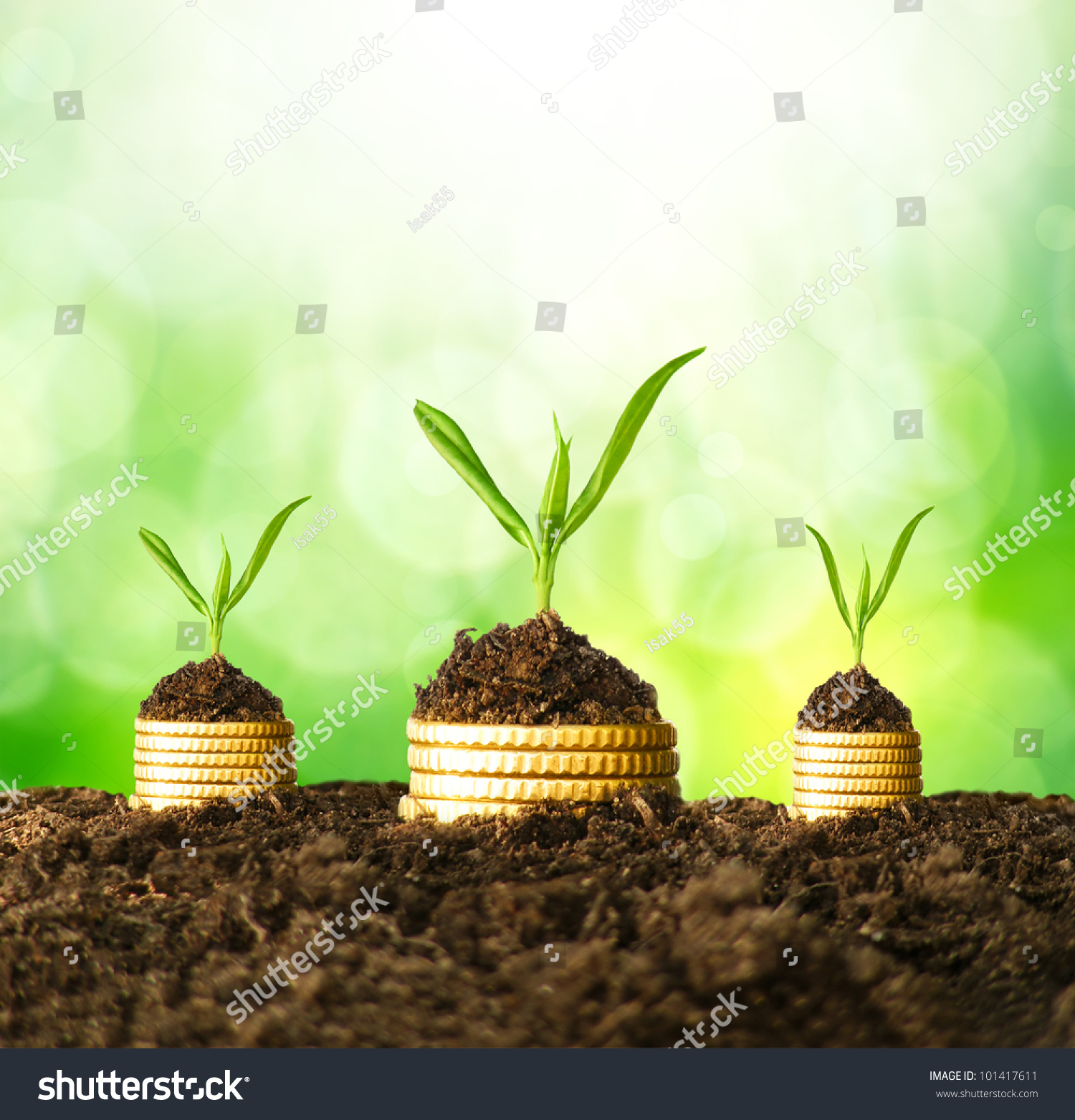 Golden Coins Soil Young Plant Money Stock Photo (Royalty Free ...