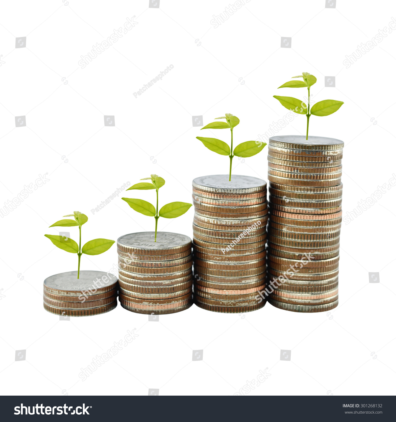 Tree On Money Growth Concept Business Stock Photo 301268132 ...