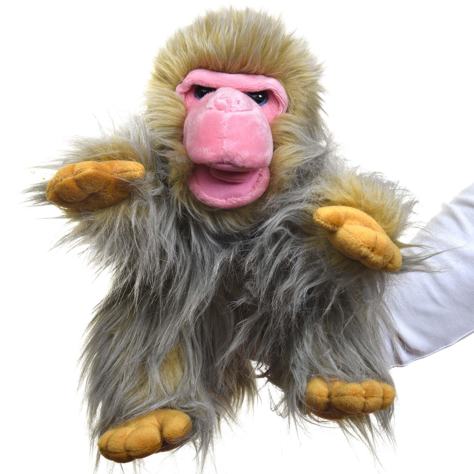 Monkey hand photo