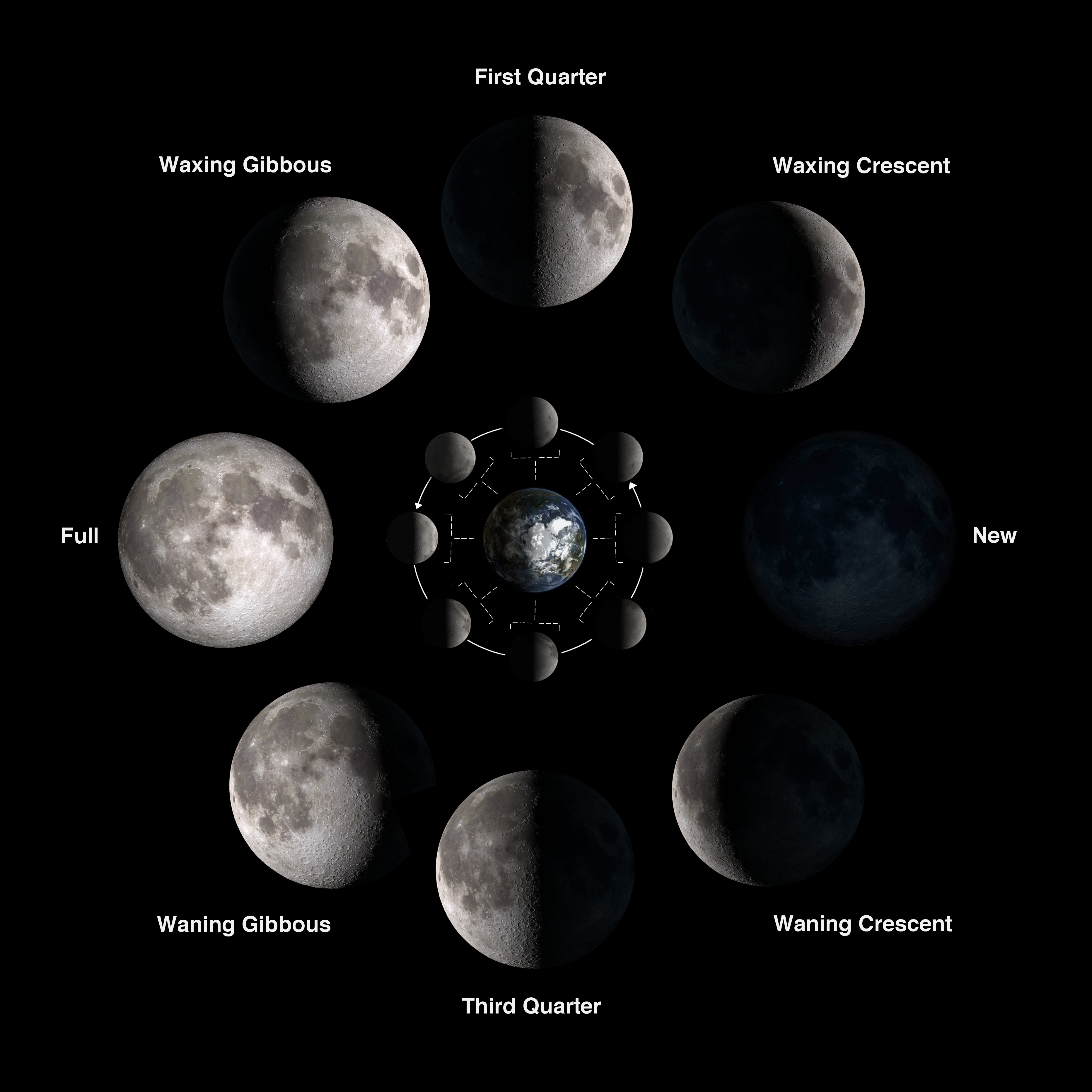 Phases of the Moon : Moon: NASA Science
